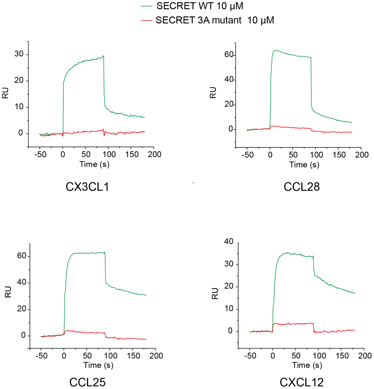 Sensograms of passing the SECRET domain wild type (green) and D167A/E169A/D316A mutant (red) through the CM5 chip surface immobilized with chemokines CX3CL1, CCL28, CCL25, and CXCL12, respectively.