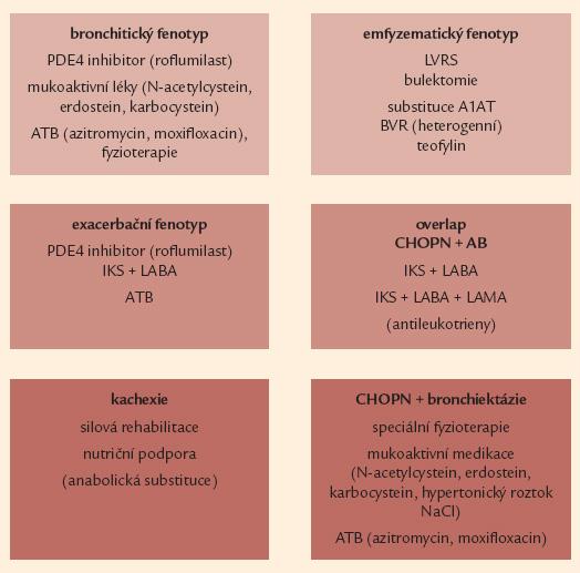 Souhrnná léčebná doporučení pro jednotlivé vyhraněné fenotypy CHOPN.  A1AT – α-1 antitrypsin, AB – bronchiální astma, ATB – antibio tika, BVR – bronchoskopická volumredukce, IKS – inhalační kortikosteroidy, LABA – inhalační β<sub>2</sub>- agonisté s dlouhodobým účinkem, LAMA – inhalační anticholinergika s dlouhodobým účinkem, LVRS – plicní volum redukující operace, NAC – N- acetylcystein, PDE4 – fosfodiesteráza 4, NaCl – natrium chloratum