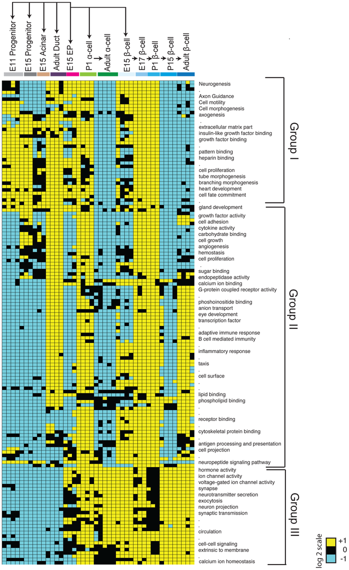 Module map analysis of differentially expressed gene sets.