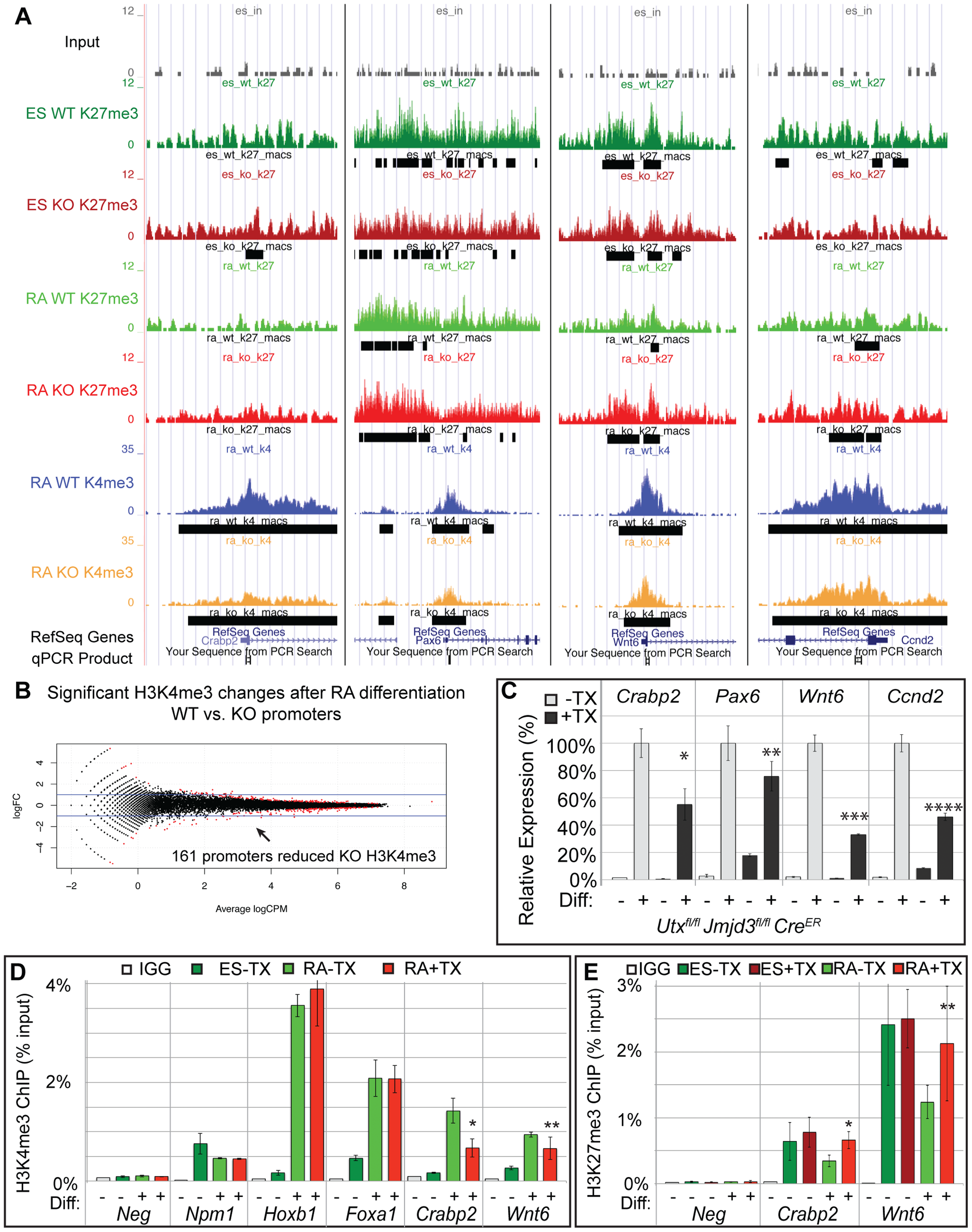 A subset of genes exhibit reduction of H3K4me3 with loss of UTX and JMJD3.