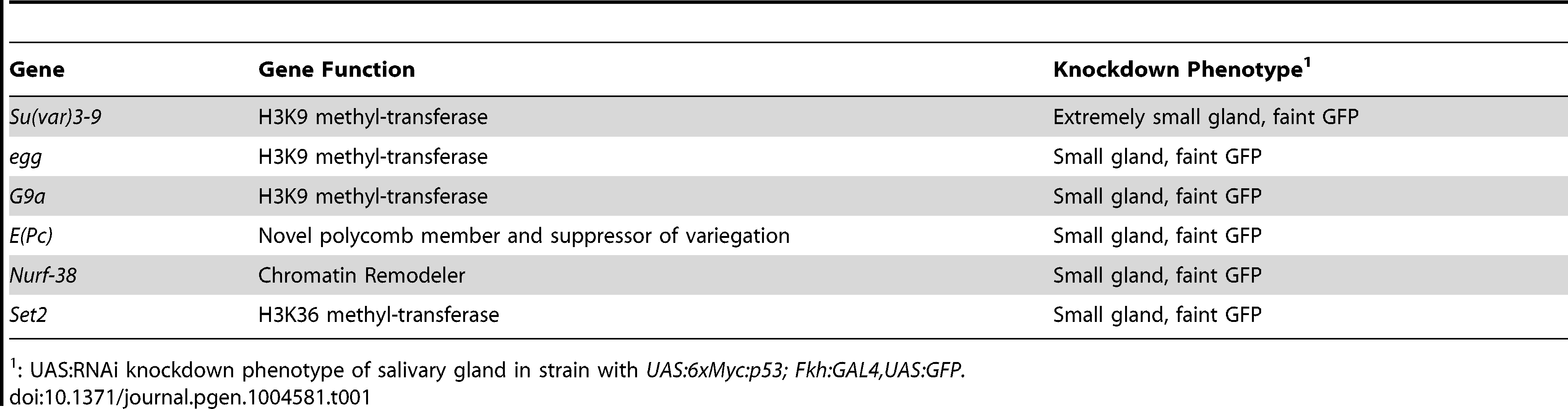 Genes recovered in an RNAi screen for salivary gland cell death.
