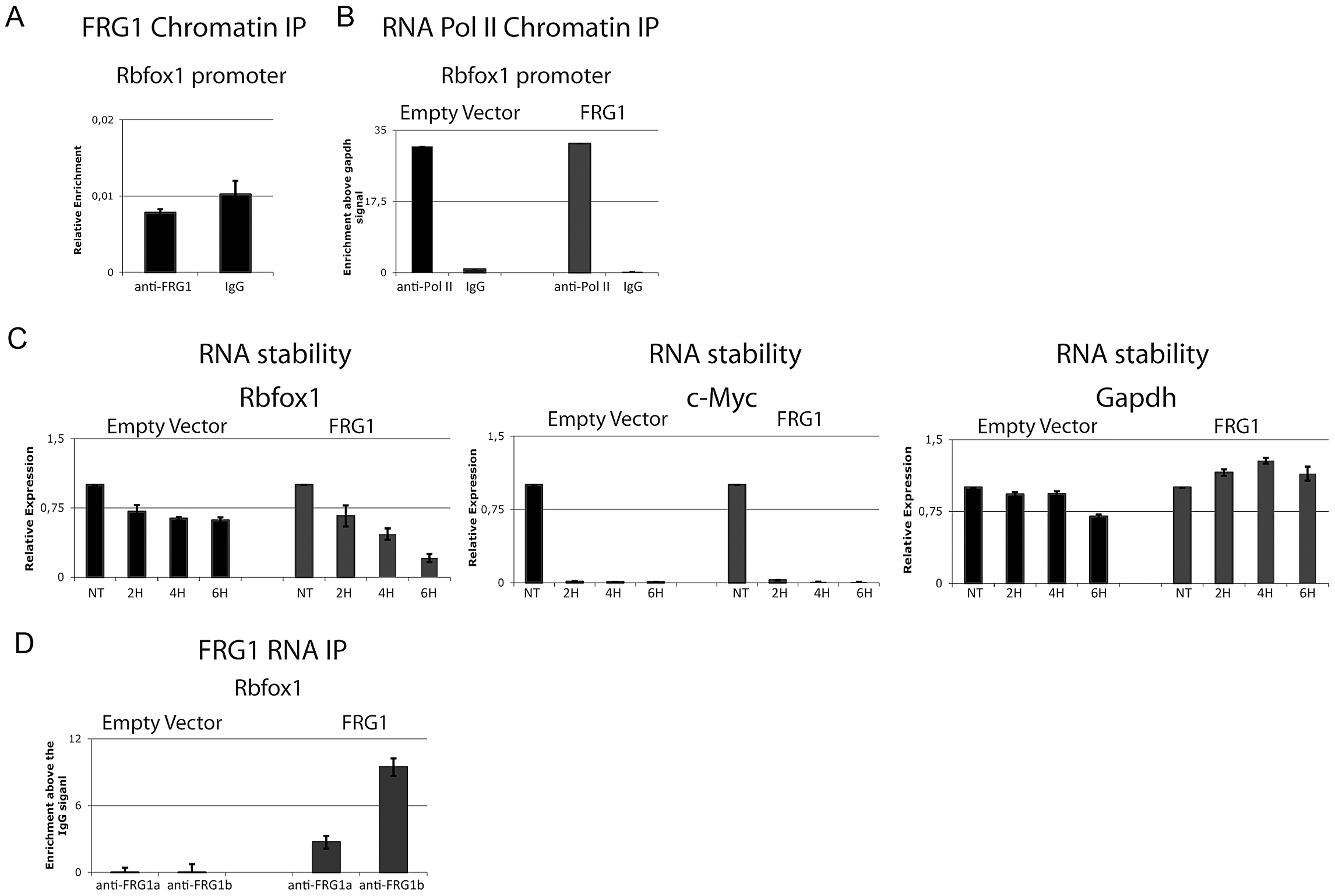 FRG1 regulates the stability of the <i>Rbfox1</i> mRNA.
