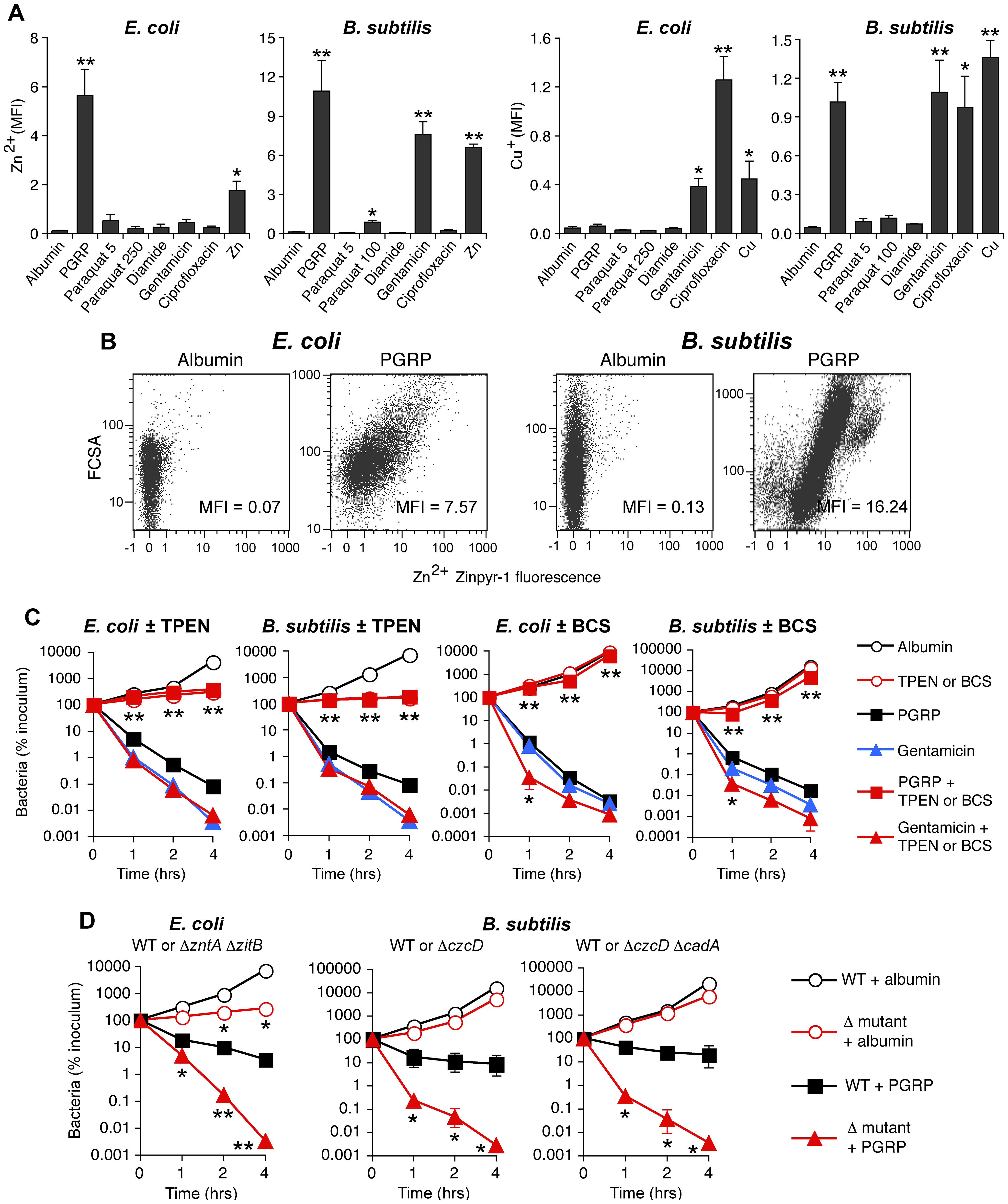 PGRP induces increase in intracellular Zn and Cu, and Zn and Cu are required for killing by PGRP but not by gentamicin.