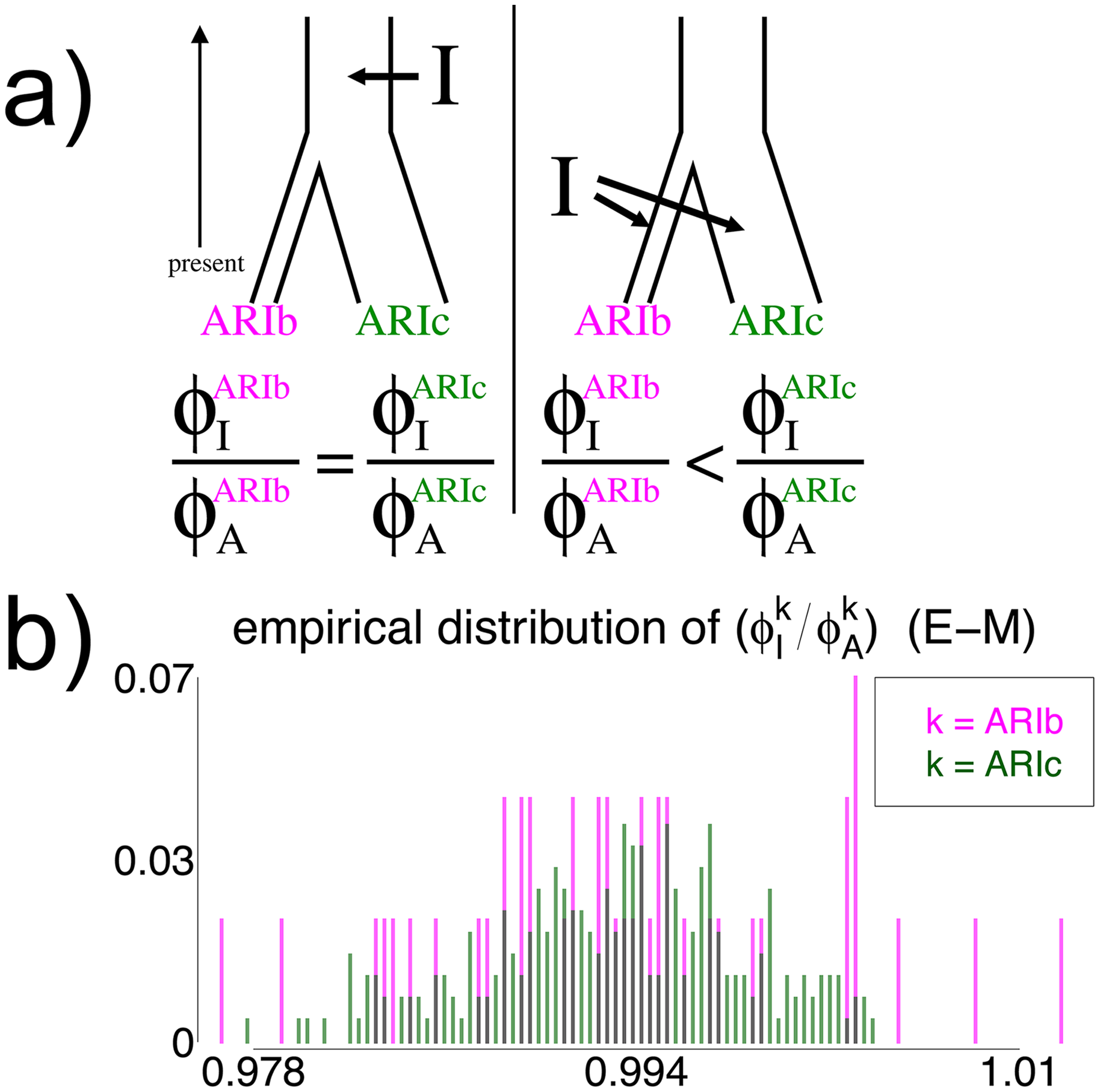 Effect on genetic similarity of two possible timings of DNA introgression.