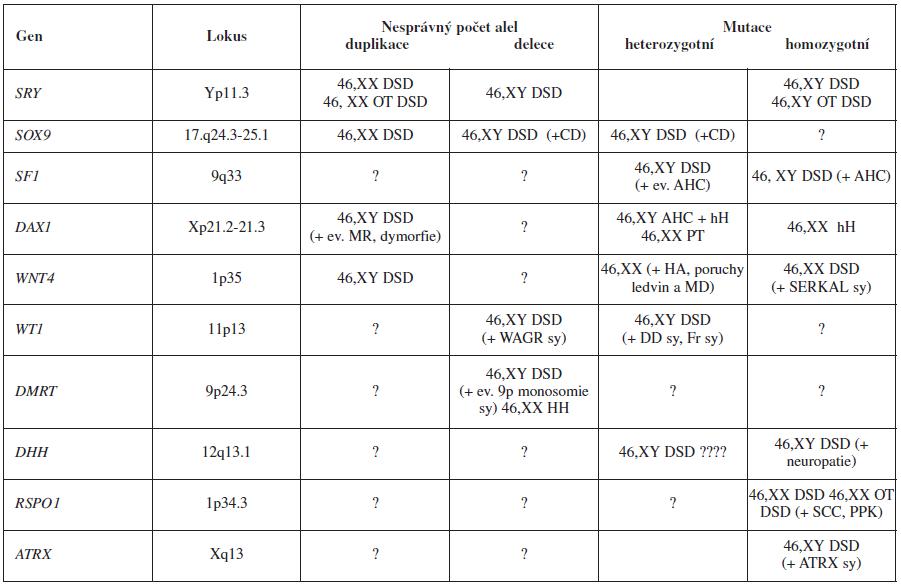 Geny, jejichž poruchy způsobují chybný vývoj gonád. DSD – porucha sexuálního vývoje; OT DSD – ovotestikulární DSD (= dříve pravý hermafroditismus); MR – mentální retardace; WAGR sy – syndrom Wilmsův tumor, aniridie, genitální malformace, mentální retardace; 9p monosomie sy – syndrom s dysmorfií, trigonocefalií, mentální retardací, 46,XY sex reversal; HH – hypergonadotropní hypogonadismus; CD – kampomelická dysplazie; AHC – kongenitální adrenální hypoplazie, hH hypogonadotropní hypogonadismus; PT – opožděná puberta; HA – hyperandrogenismus; MD – ductus Mülleri; DD sy – Denys- Drash syndrom; Fr sy – Frasier syndrom; SERKAL sy – syndrom sex reversal, poruchy vývoje ledvin, nedledvin a plic; SCC – spinocelulární karcinom; PPK – palmoplantární keratóza; ATRX sy – syndrom α-talasémie a mentální retardace spojený s X chromozomem; ? – dosud nebylo zaznamenáno [1,3-30]