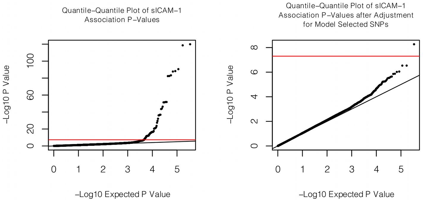 Quantile-quantile plot of association with sICAM-1.