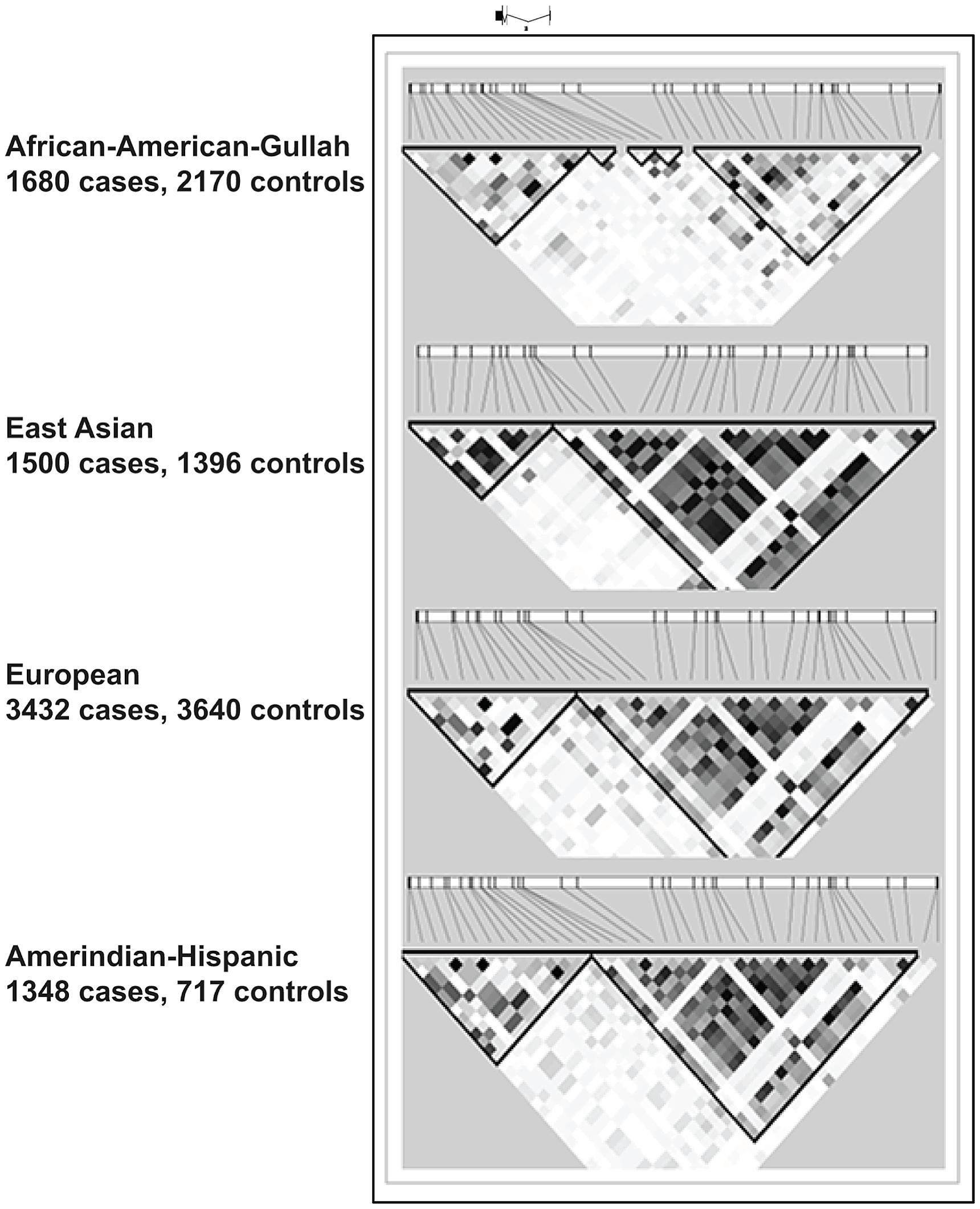 LD plots at <i>TNFSF4</i> locus in four populations.