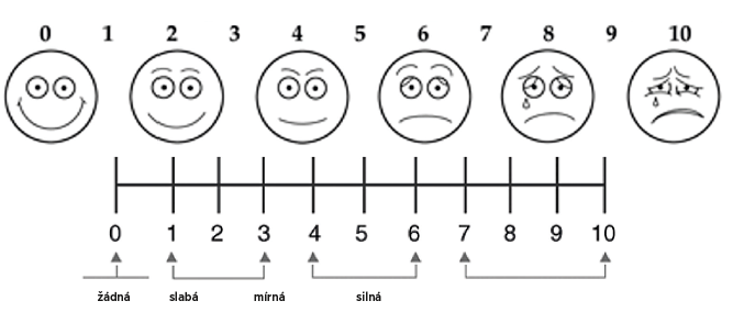 Příloha 1 Vizuální analogová škála bolesti (VAS).