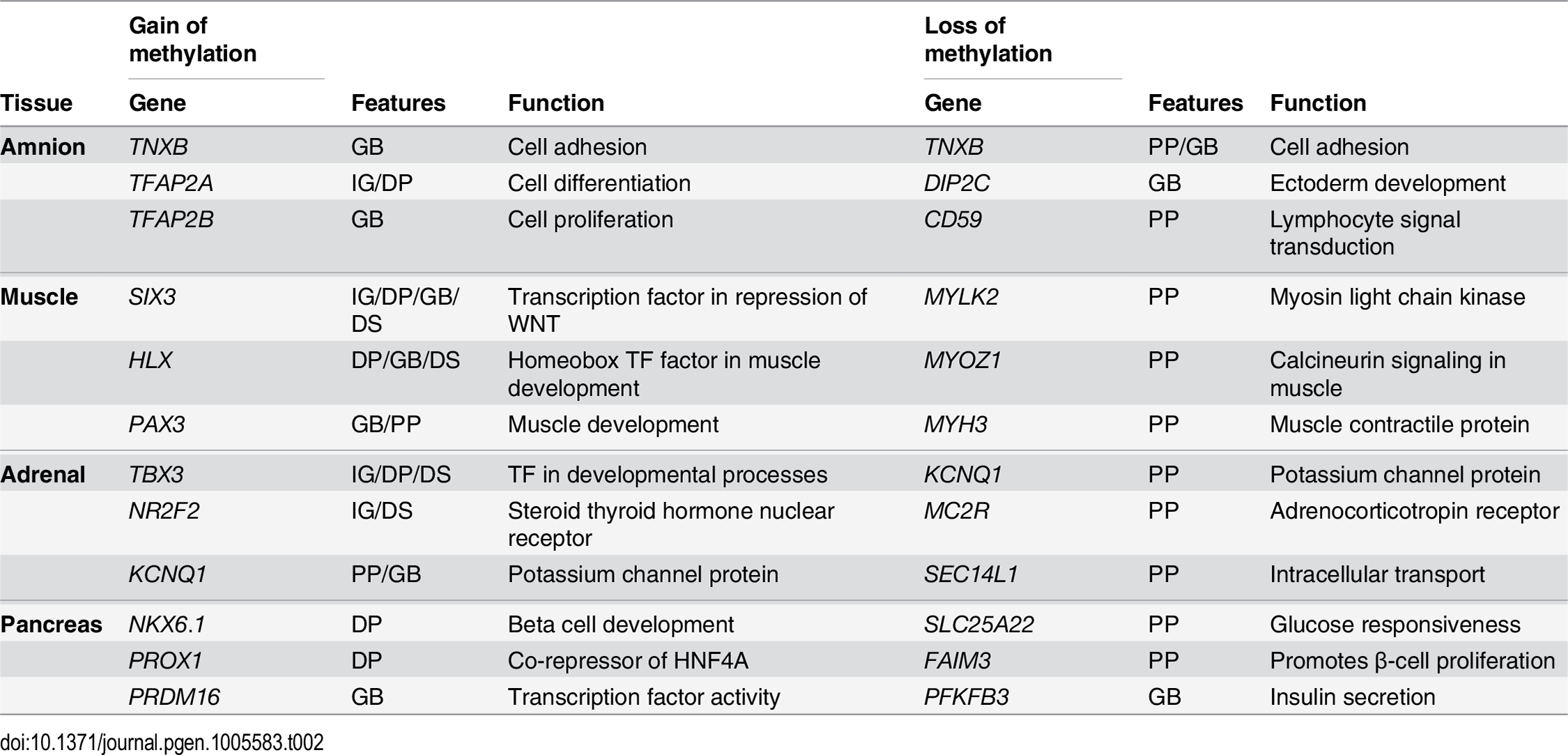Table with six genes per tissue highlighting the tissue specificity of the genes found near dDMRs with a loss of methylation as well as the association of dDMRs with a gain of methylation with tissue-specific developmental genes.