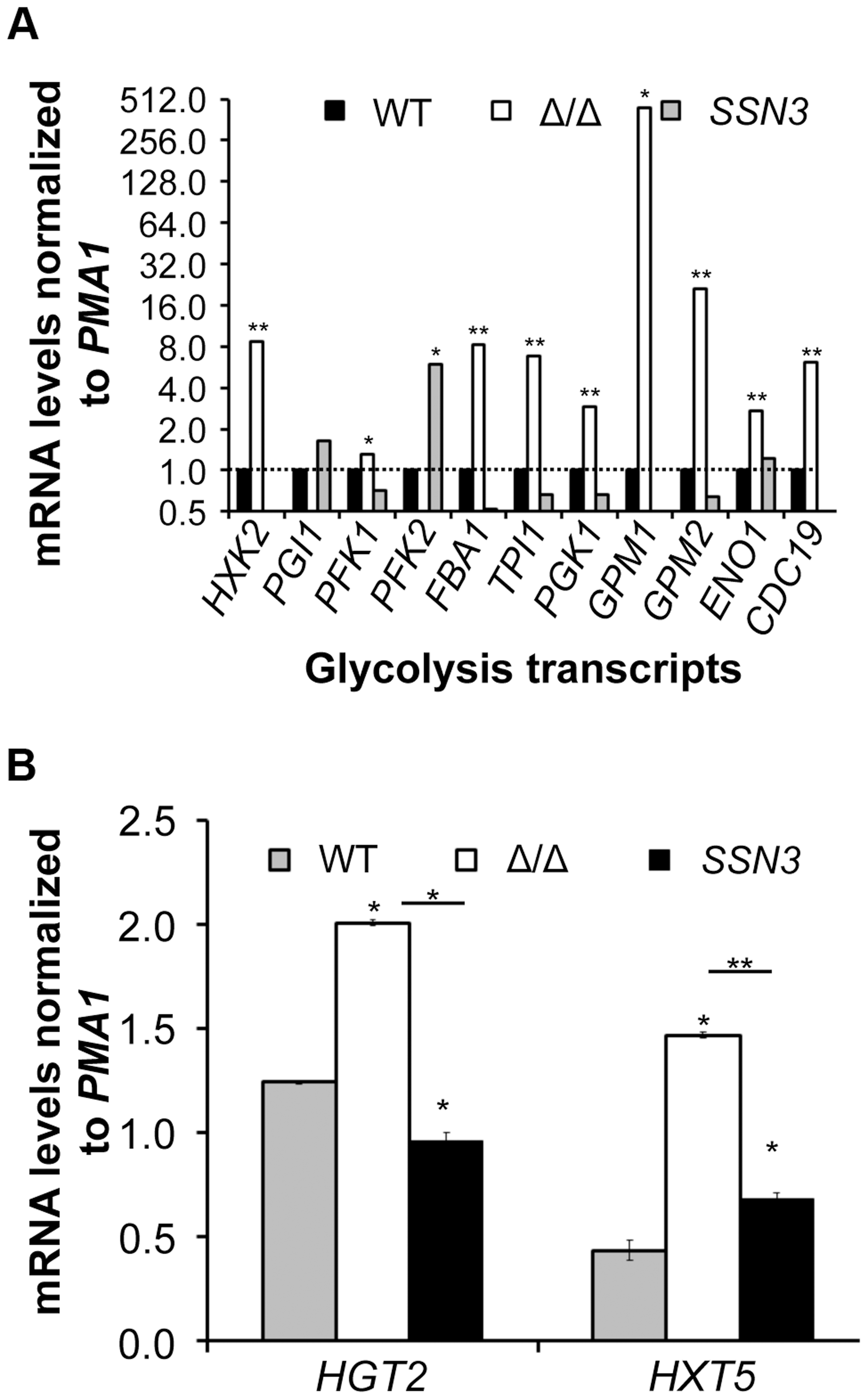Loss of <i>SSN3</i> results in increased expression of glycolysis genes and glucose transporters.