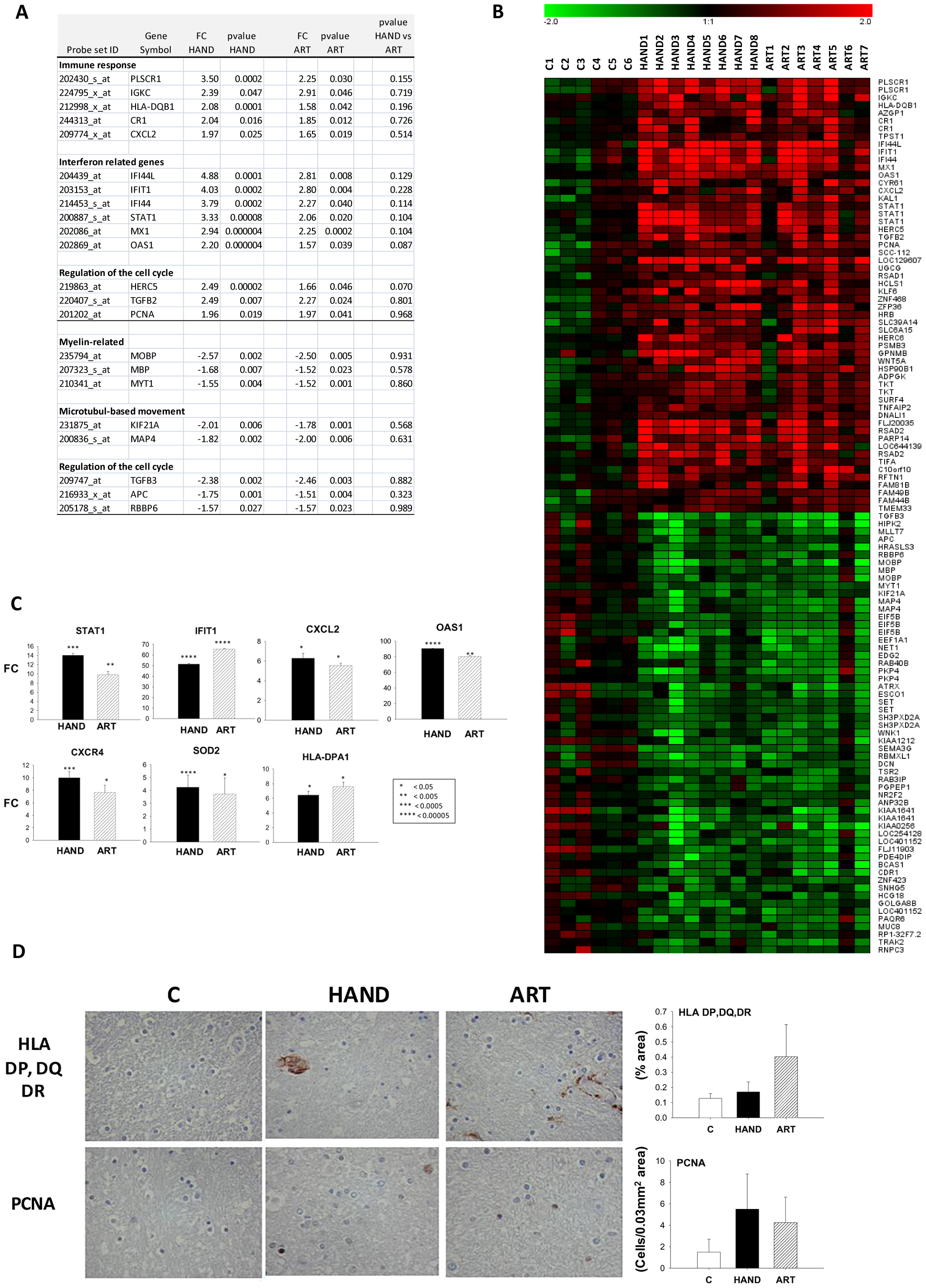 Common dysregulated genes in brain tissues of treated and untreated HAD patients.