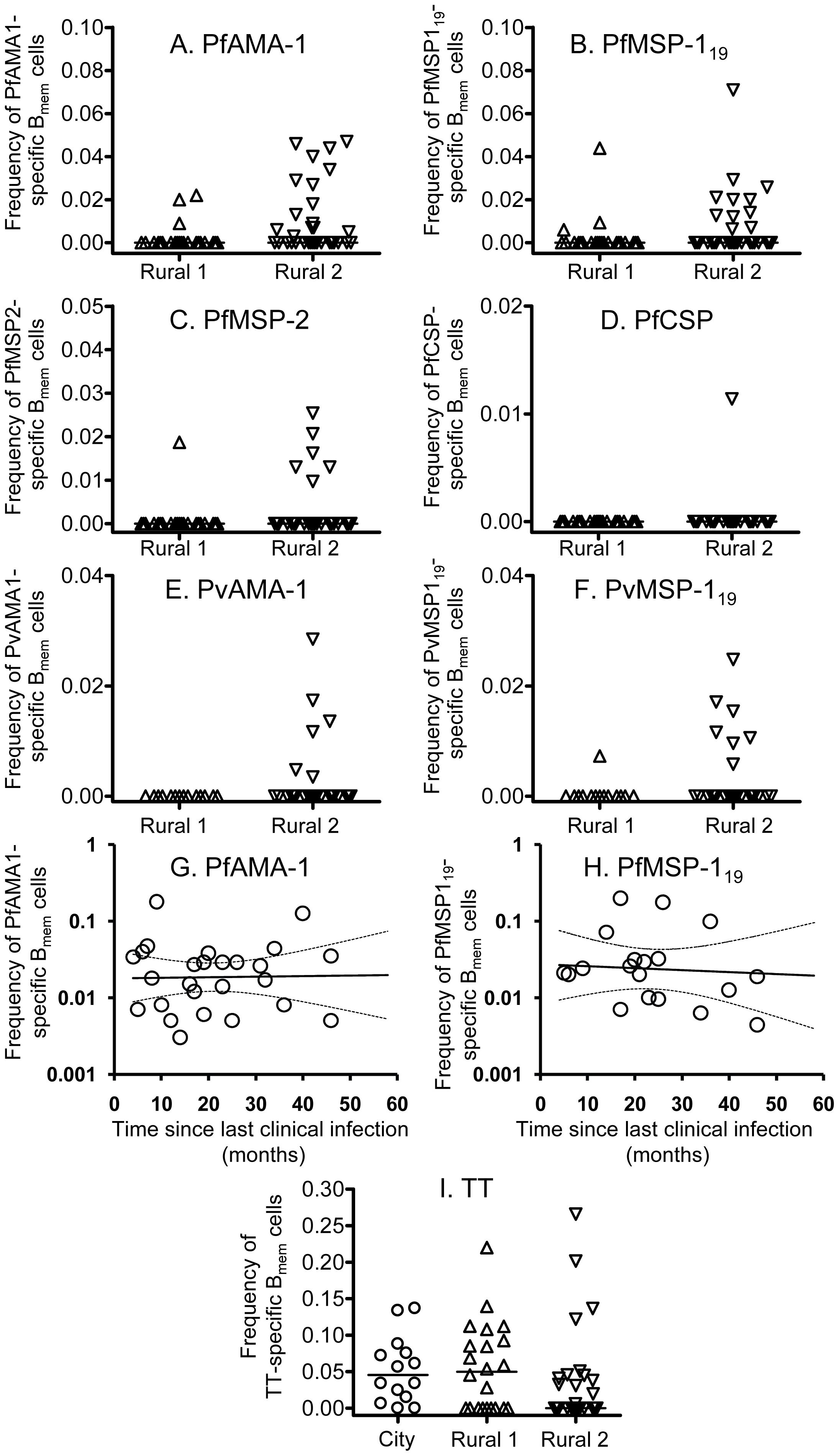 B cell memory responses to malaria antigens and tetanus toxoid.