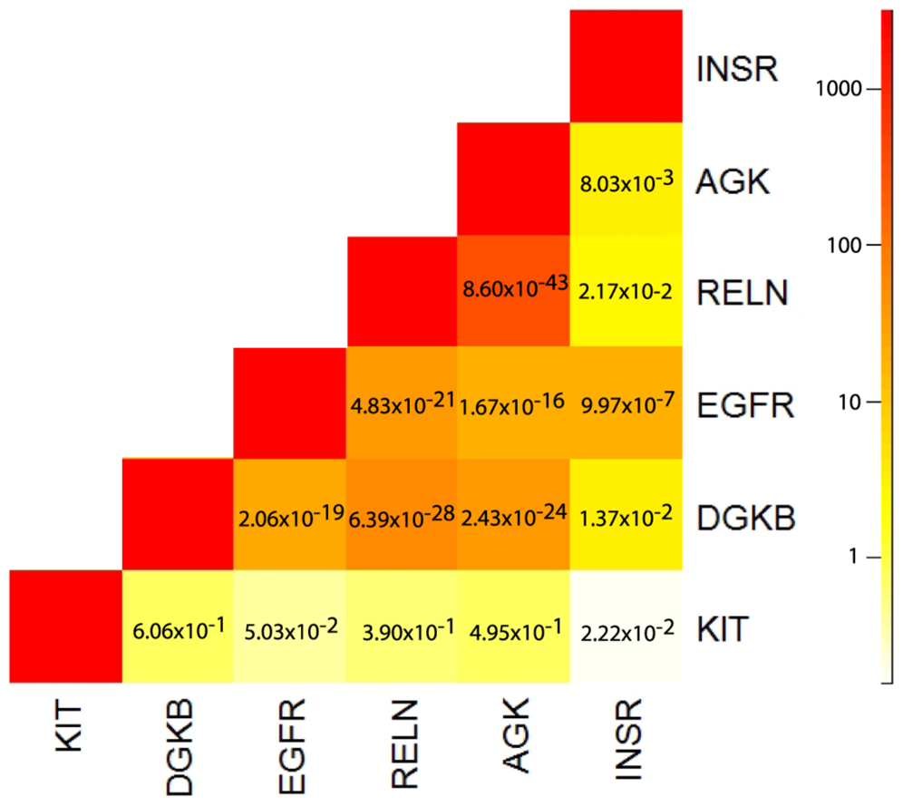 Heatmap of correlation, as measured by odds ratio estimates, between amplification status among six kinase/transferase activity genes showing signs of somatic allelic selection.
