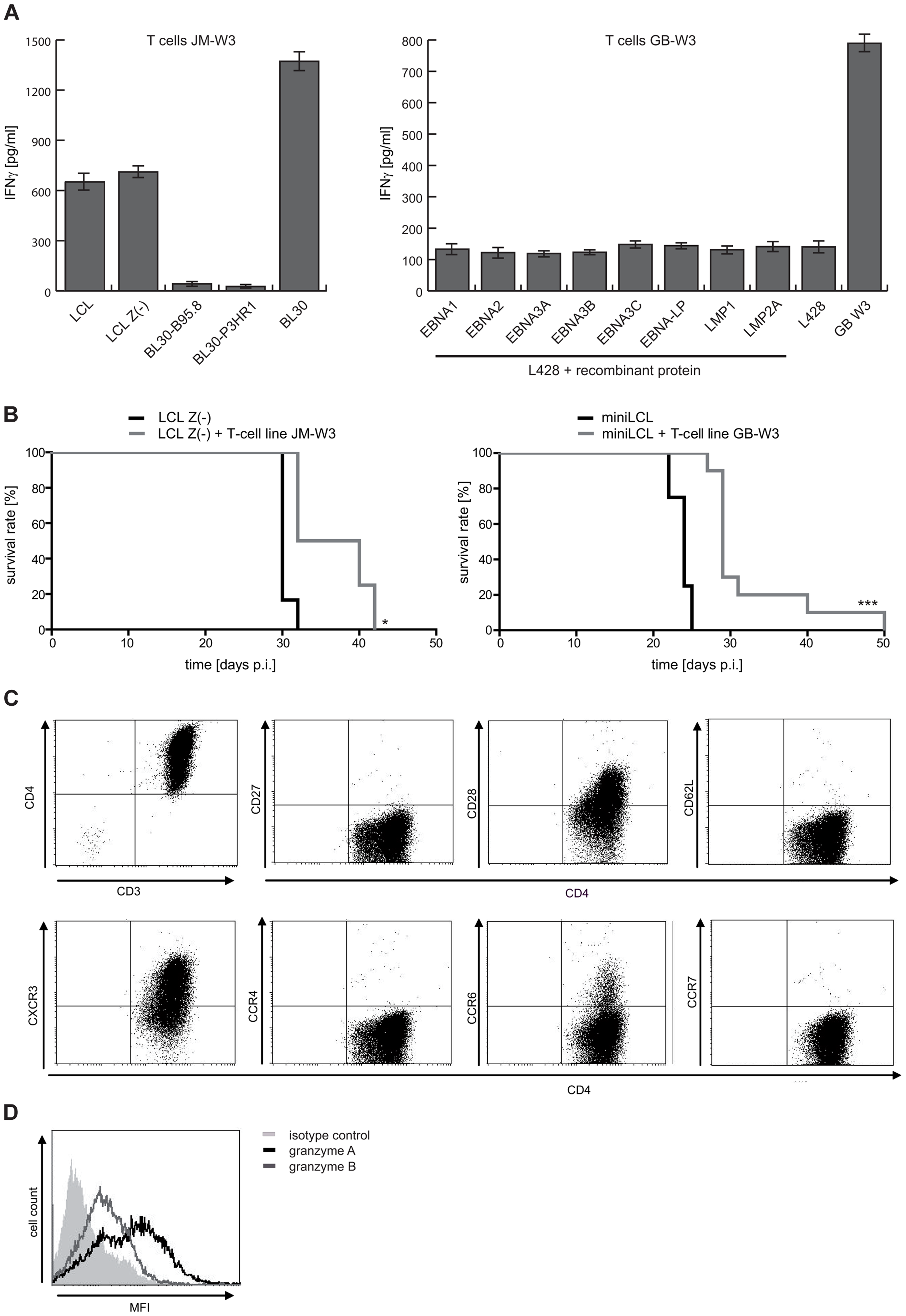 LCL Z(-)- as well as miniLCL-stimulated T-cell lines recognize autoantigens and prolong mouse survival.