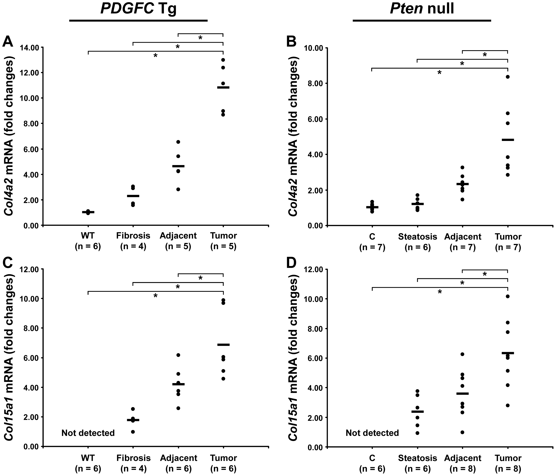 Up-regulation of <i>Col4a2</i> and <i>Col15a1</i> mRNAs in <i>PDGFC</i> Tg and <i>Pten</i> null tumors.