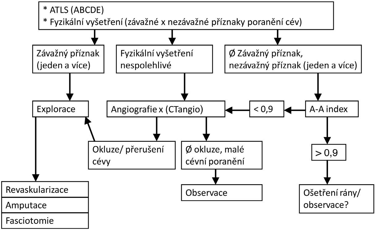 Indikace k urgentní amputaci v souvislosti s poraněním velkých končetinových cév