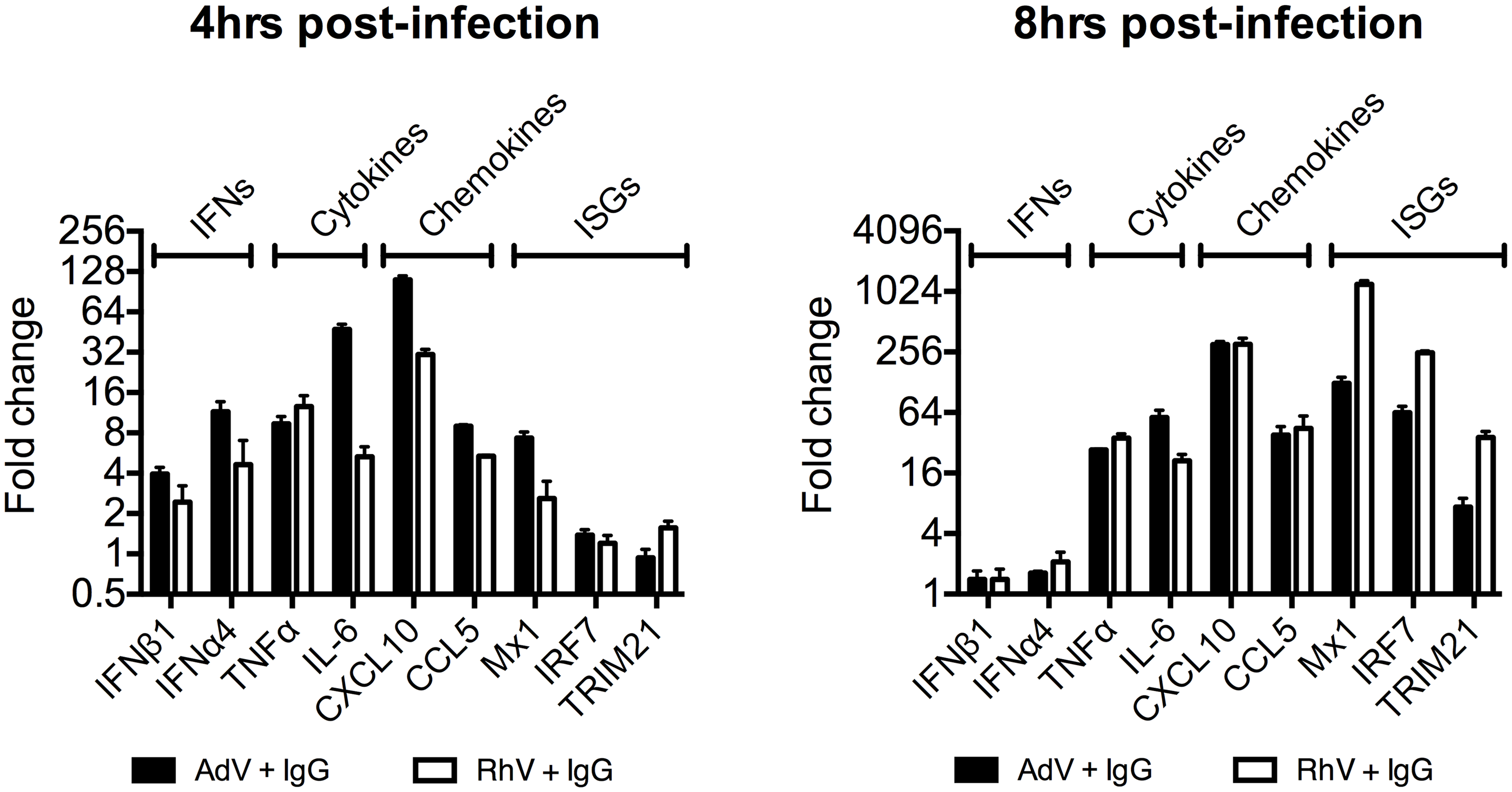 Transcriptional profiles induced by different antibody-opsonized viruses are differentially modulated during infection.