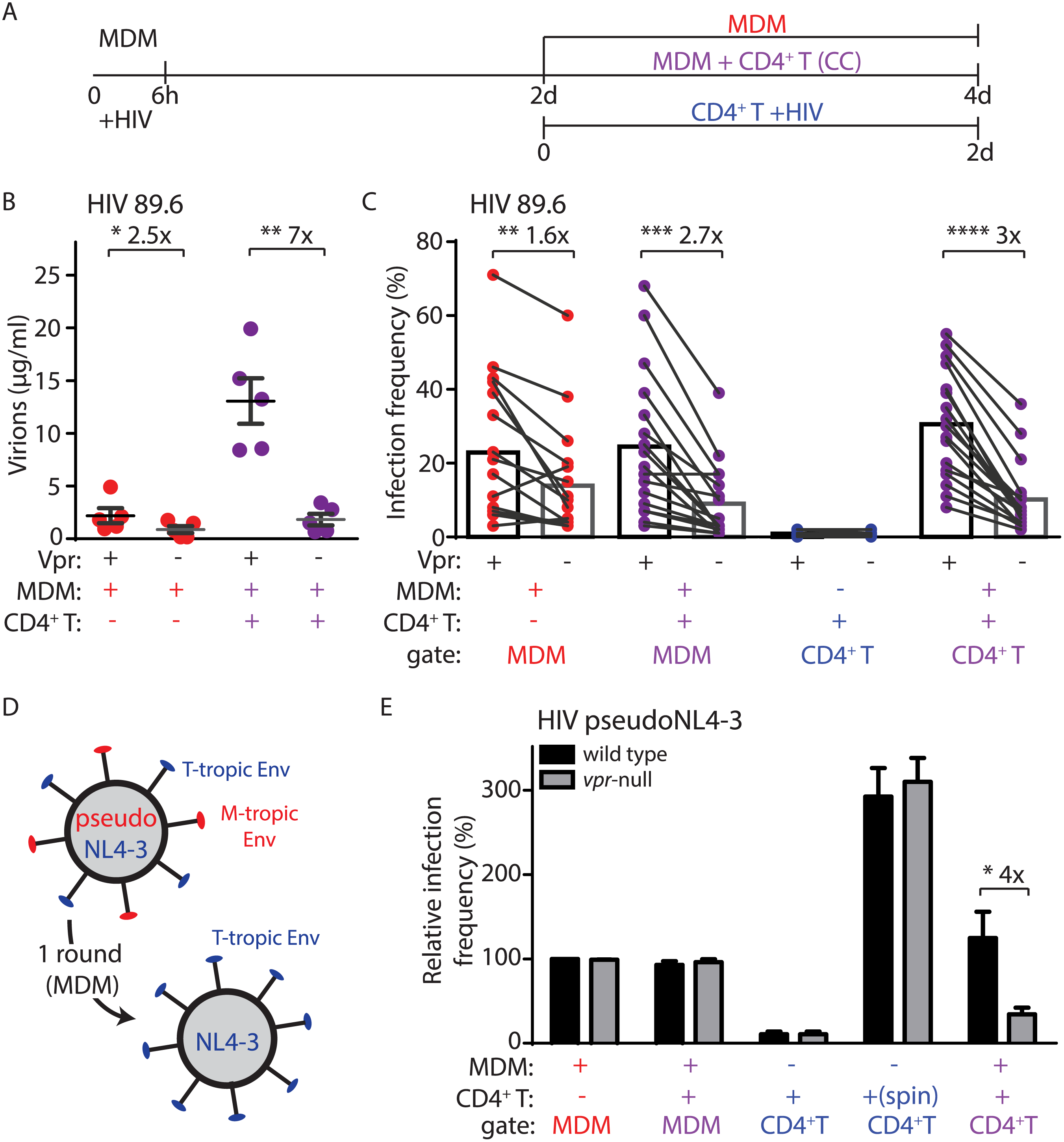 Vpr enhances macrophage-dependent infection of CD4<sup>+</sup> T lymphocytes.