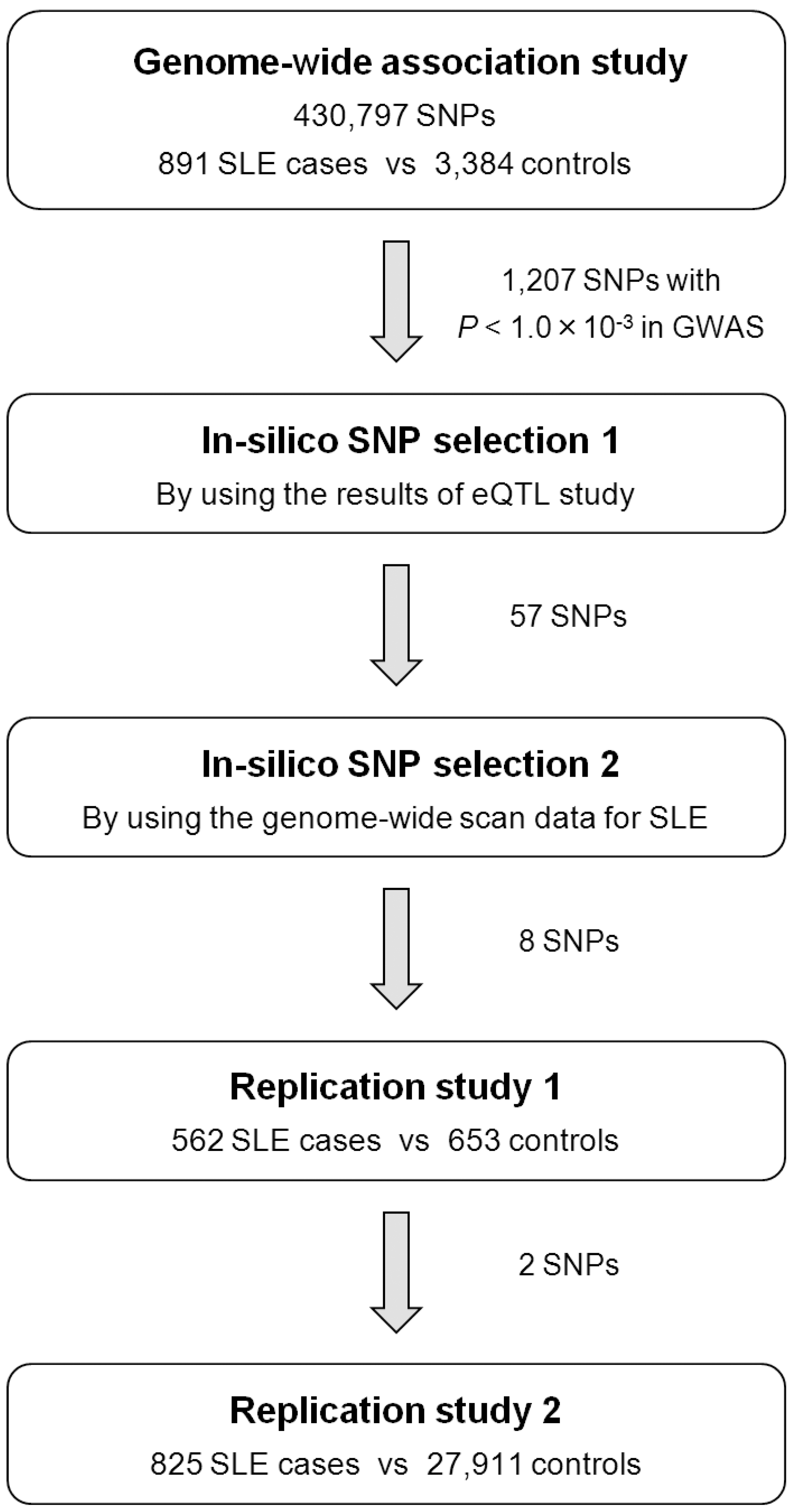 Design of the GWAS and multi-stage replication studies for SLE in Japanese subjects.