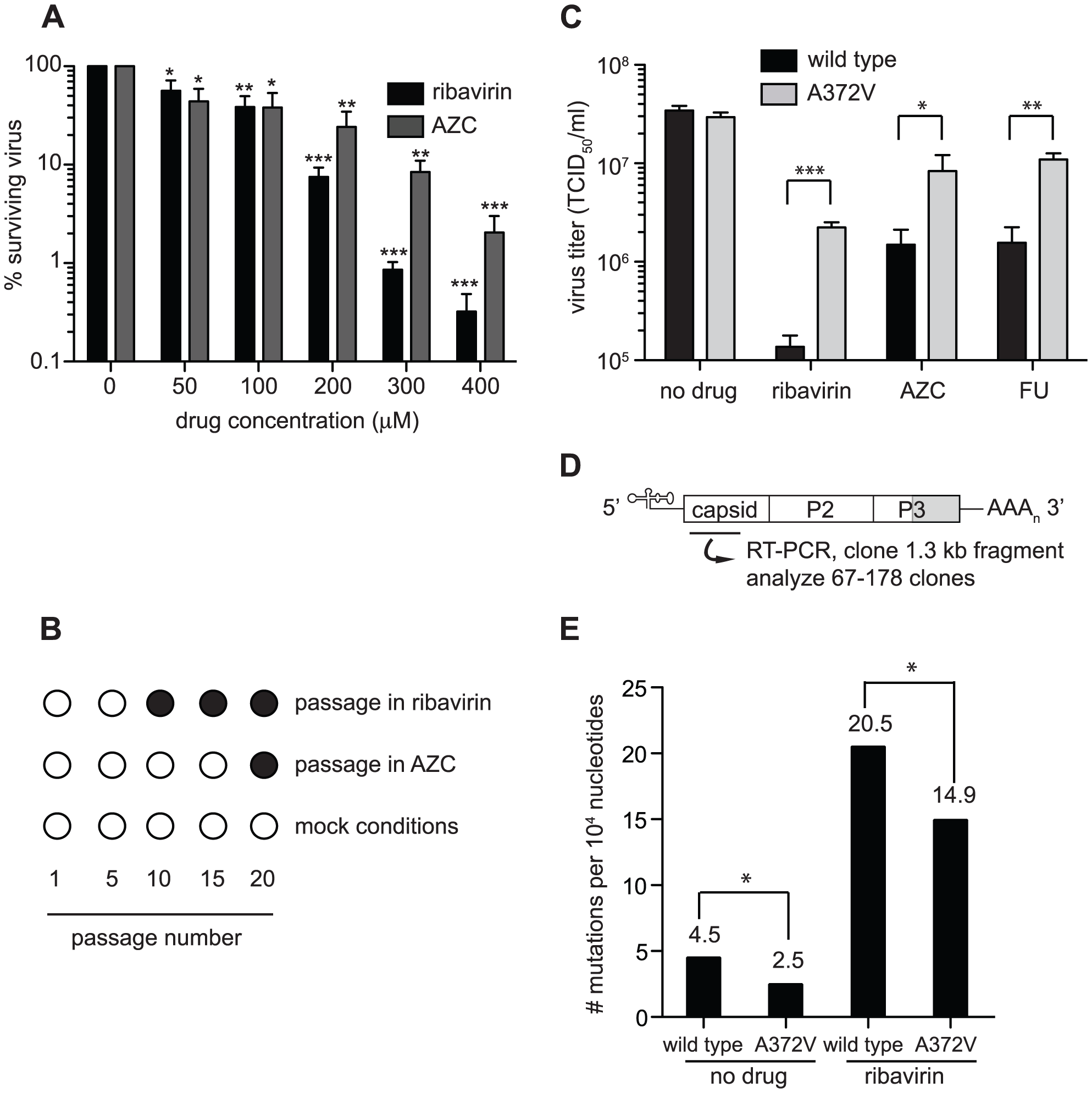 Isolation of an RNA mutagen resistant CVB3 with a high fidelity RdRp.