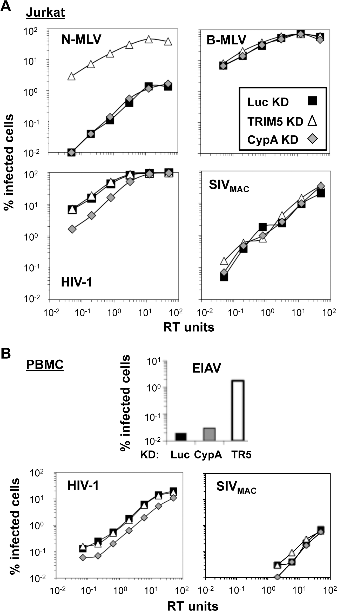 Knockdown of TRIM5 or of cyclophilin A has no effect on SIV<sub>MAC</sub> transduction of Jurkat CD4<sup>+</sup> T cells.