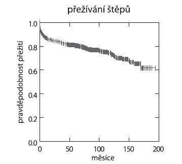 Graf 3b. Přežívání štěpů (IKEM 1995–10/2010, n = 503)