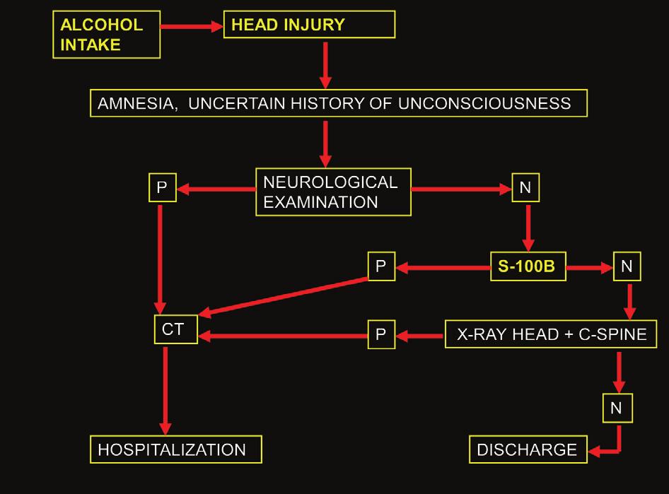 Diagnostický postup při vyšetřování pacienta s podezřením na komoci mozkovou (P – pozitivní nález, N – negativní nález) Graph 2: Diagnostic algorithm in the examination of a patient with suspected brain concussion (P – positive finding, N – negative finding)