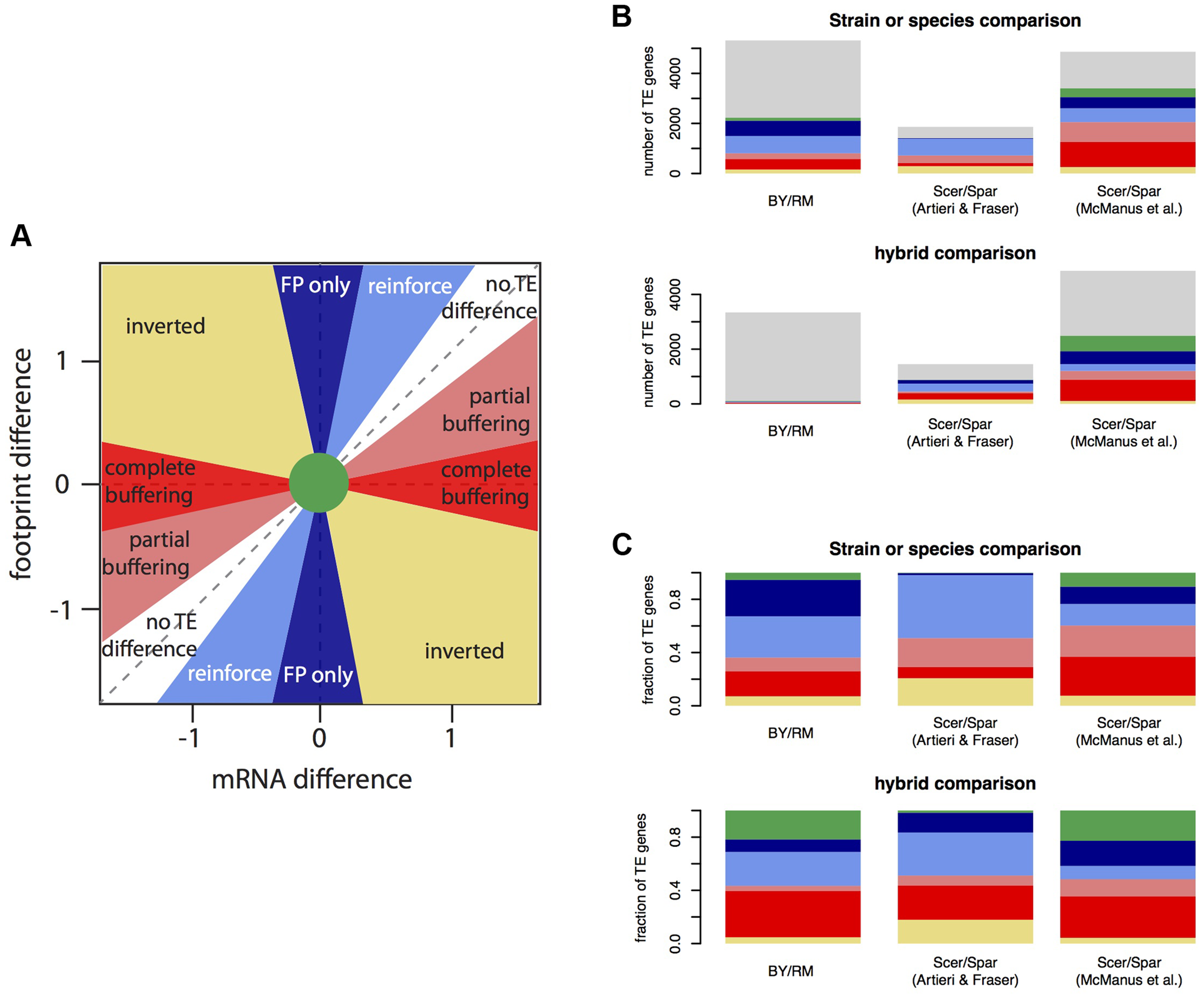 Relationship between mRNA differences and footprint differences within and between species.
