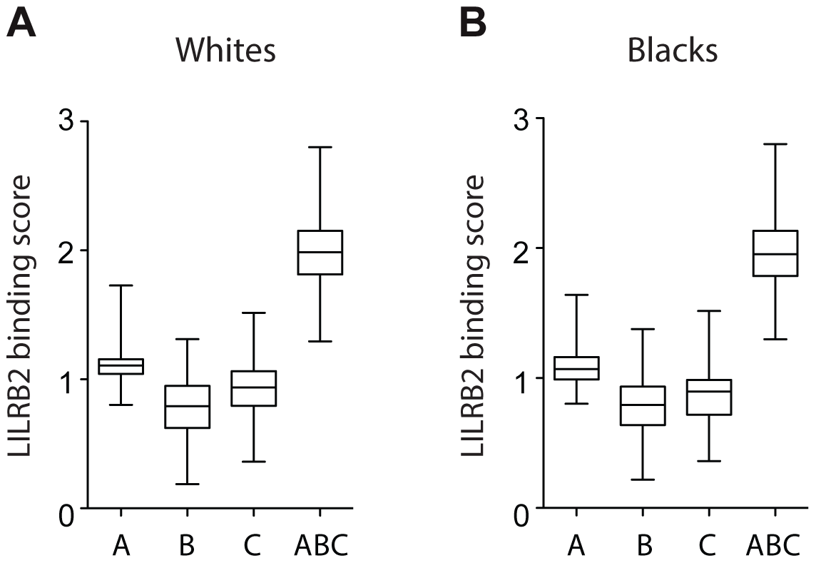 LILRB2-HLA binding score variations in 2900 white (A) and 1490 black (B) patients.