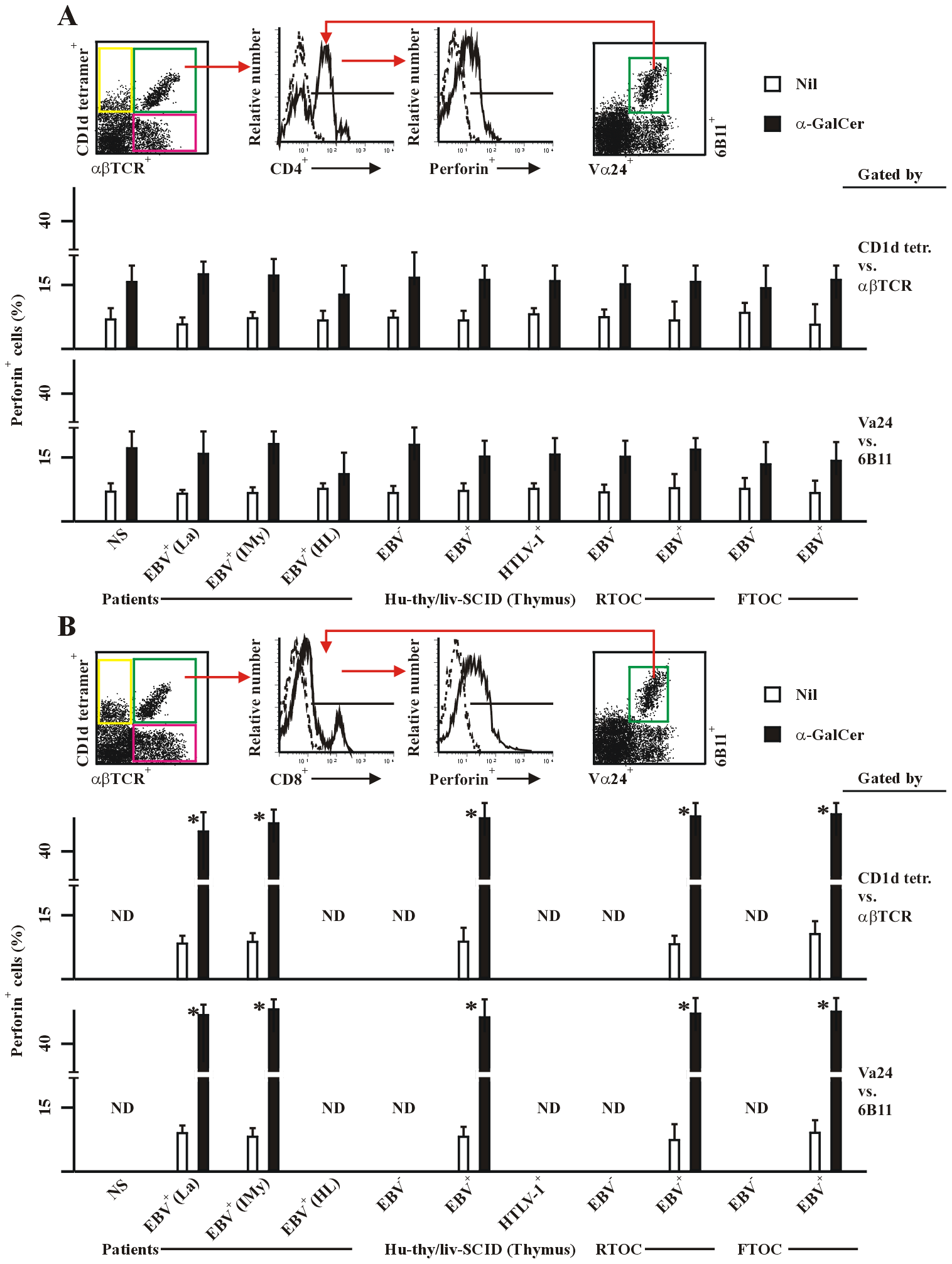 Perforin expression in human and chimeric CD4<sup>+</sup> and CD8<sup>+</sup> NKT cells.