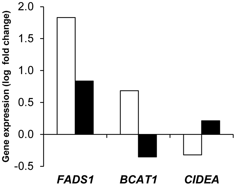 Adipose tissue markers of weight regain and weight loss during the 26-week weight maintenance diet.