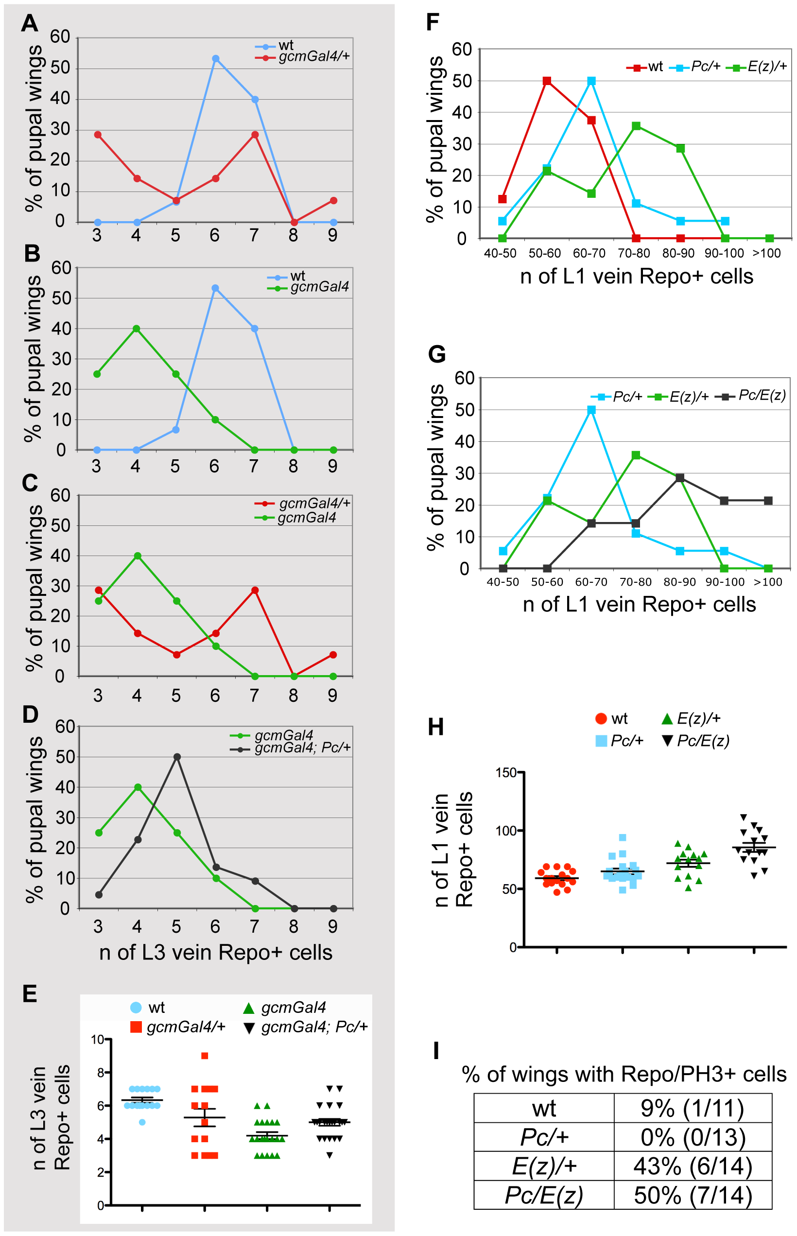 PcG genes control glia proliferation.