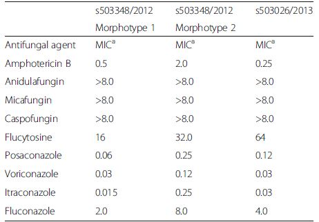 Antifungal susceptibility testing of <i>T. mycotoxinivorans</i> isolated in 2012 (Morphotype 1 and Morphotype 2) and 2013