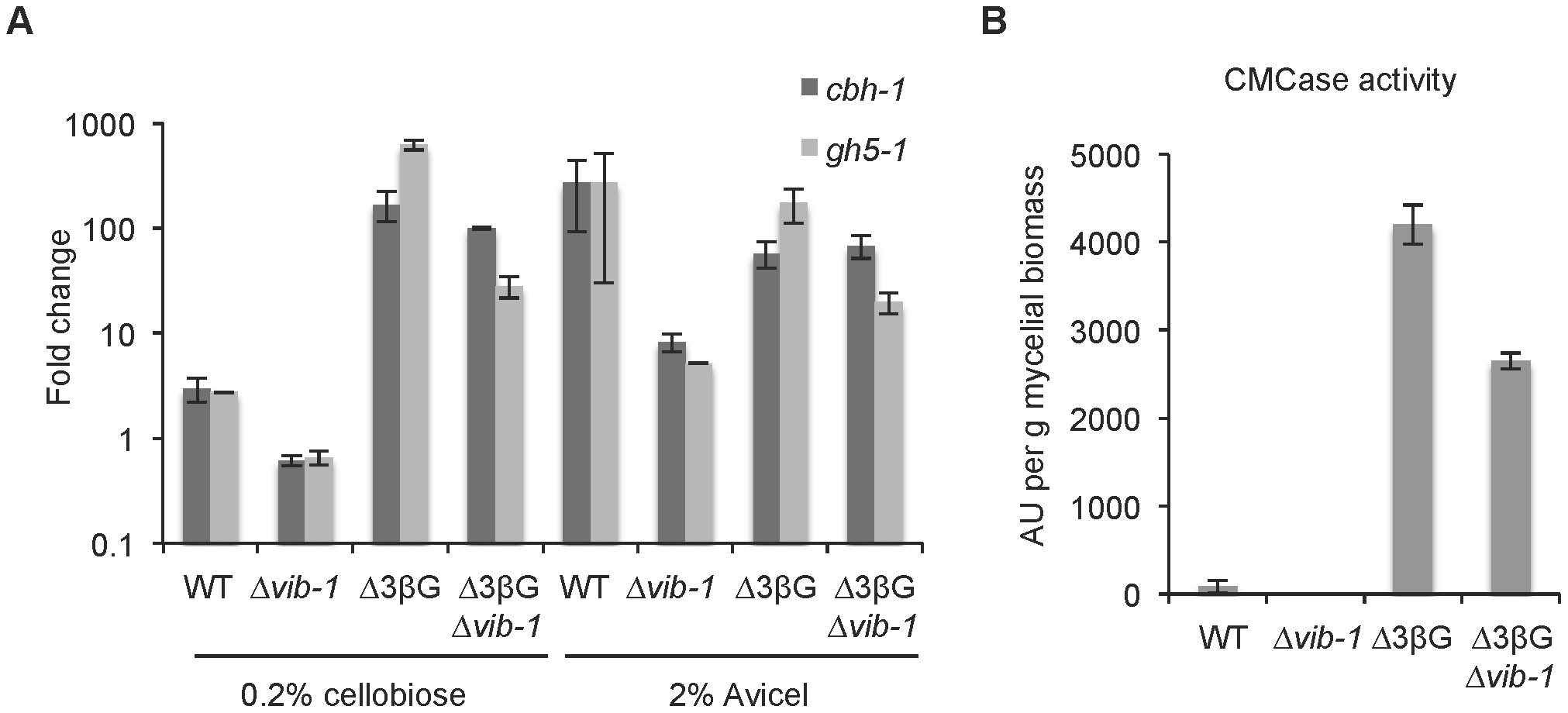 VIB1 is not required for cellobiose sensing or signaling.