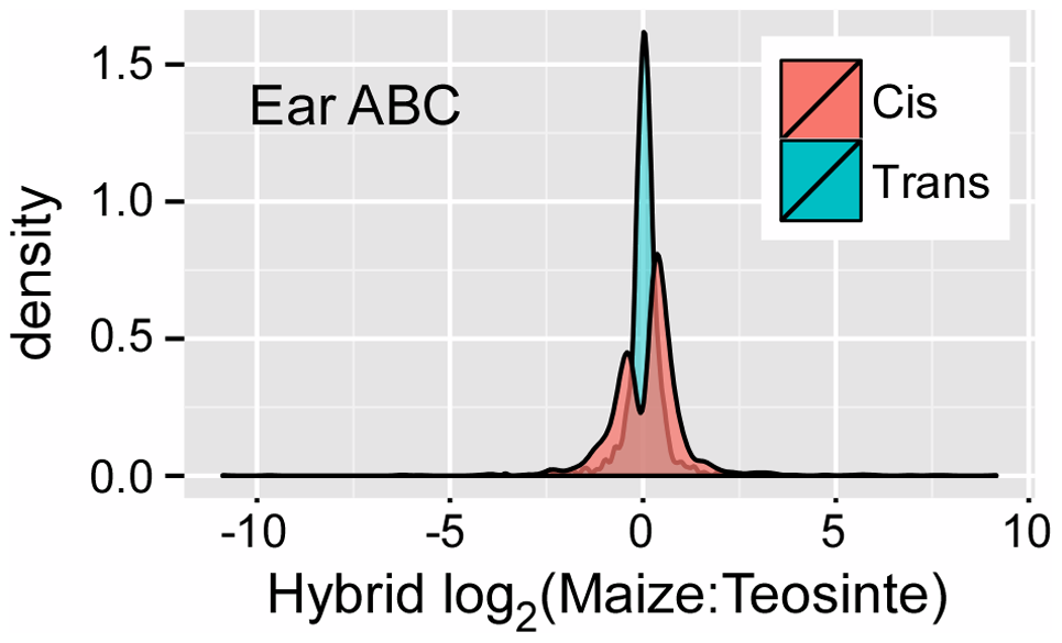 <i>Cis</i> versus estimated <i>trans</i> regulatory effect for CCT-ABC genes in the ear.