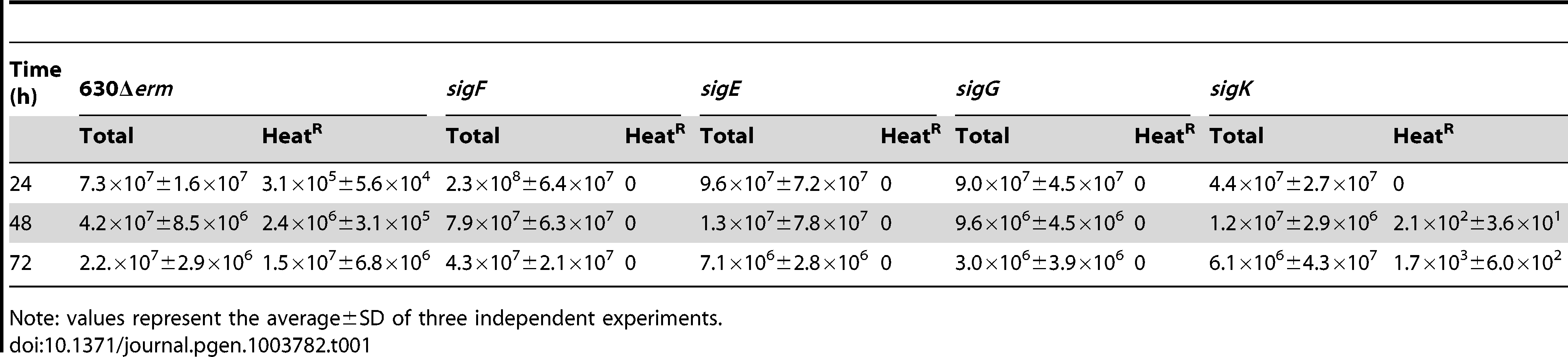 Total and heat resistant (Heat<sup>R</sup>) cell counts (CFU/ml) for the wild type strain (630Δ<i>erm</i>) and congenic <i>sigF</i>, <i>sigE</i>, <i>sigG</i> and <i>sigK</i> mutants in SM.
