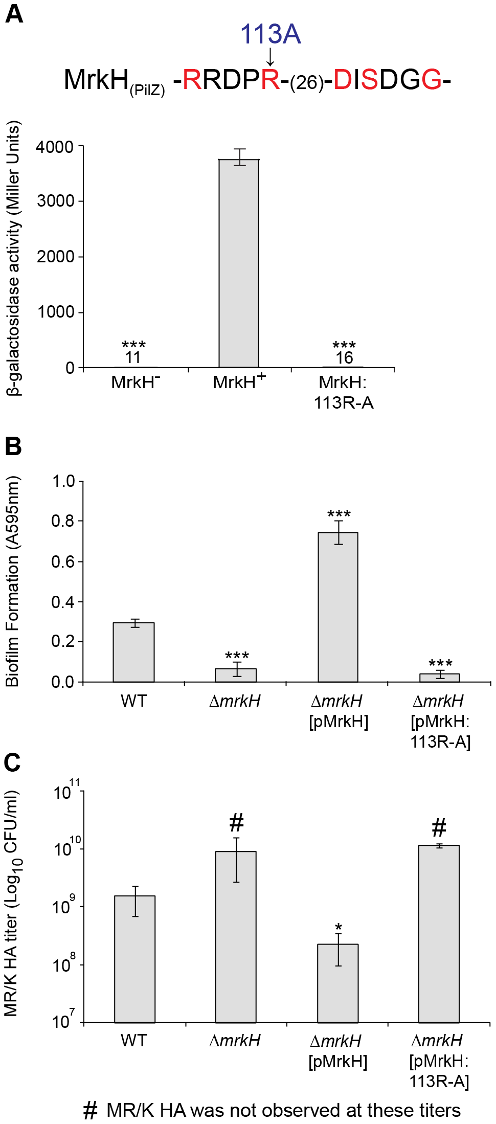 Analysis of a PilZ-domain mutation on MrkH-mediated transcriptional activation, biofilm formation and type 3 fimbriae expression.