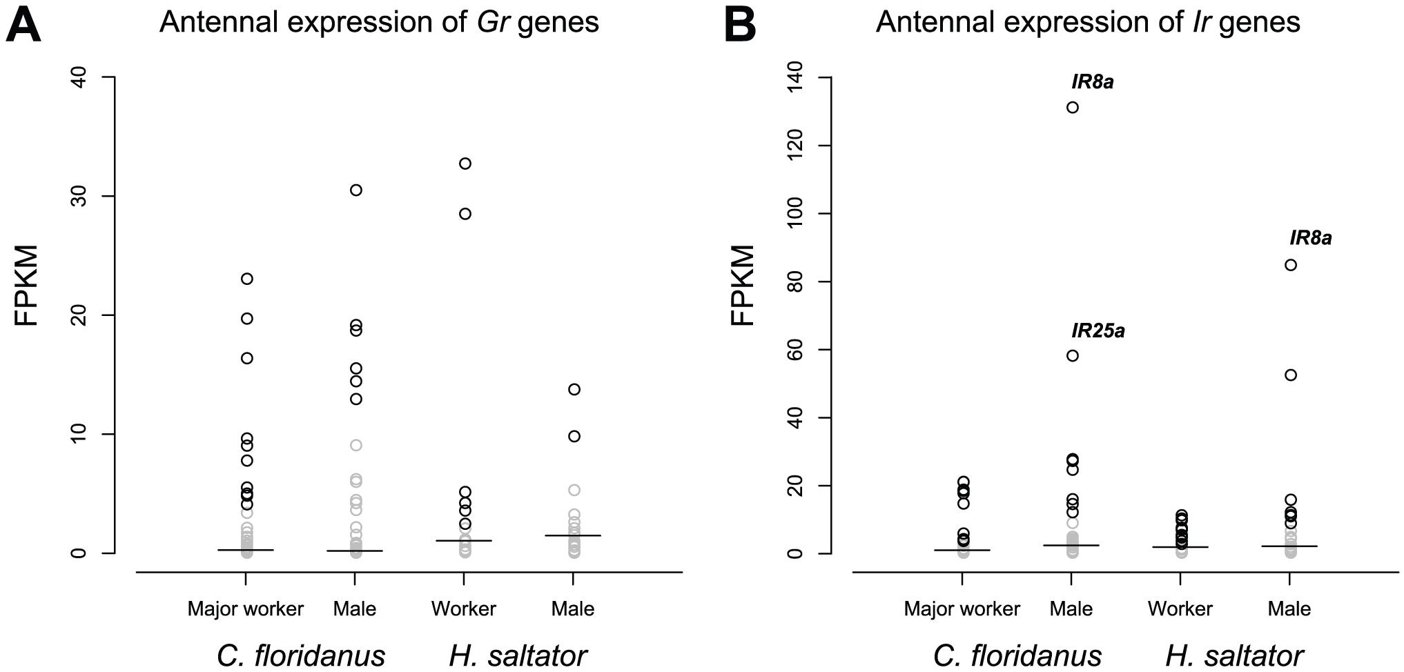 Expression levels of <i>Gr</i> and <i>Ir</i> genes.