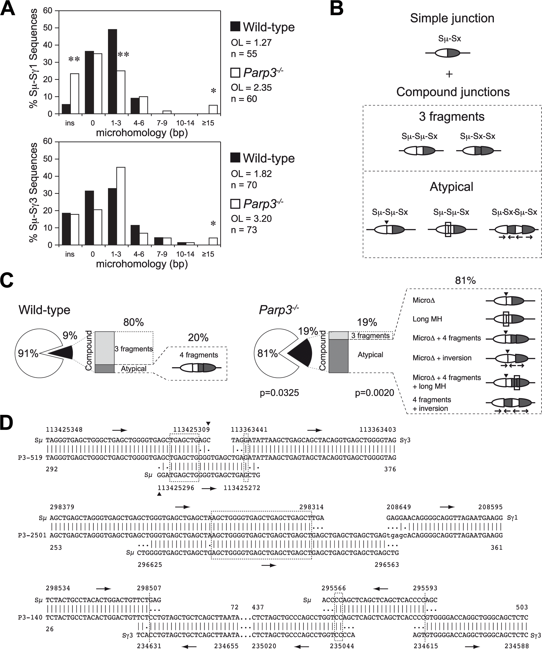 Altered end-joining and enhanced DNA damage at switch regions in <i>Parp3<sup>-/-</sup></i> B cells.