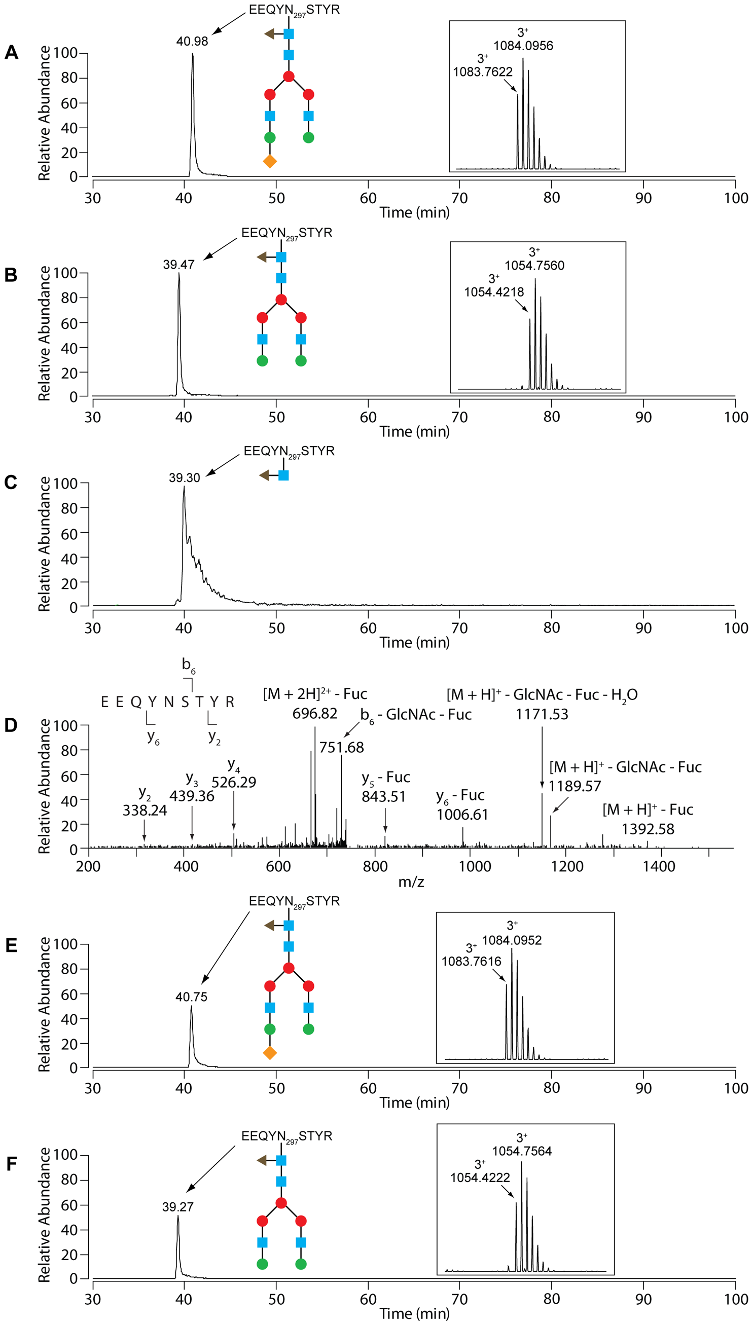 LC-MS analysis of IgG.