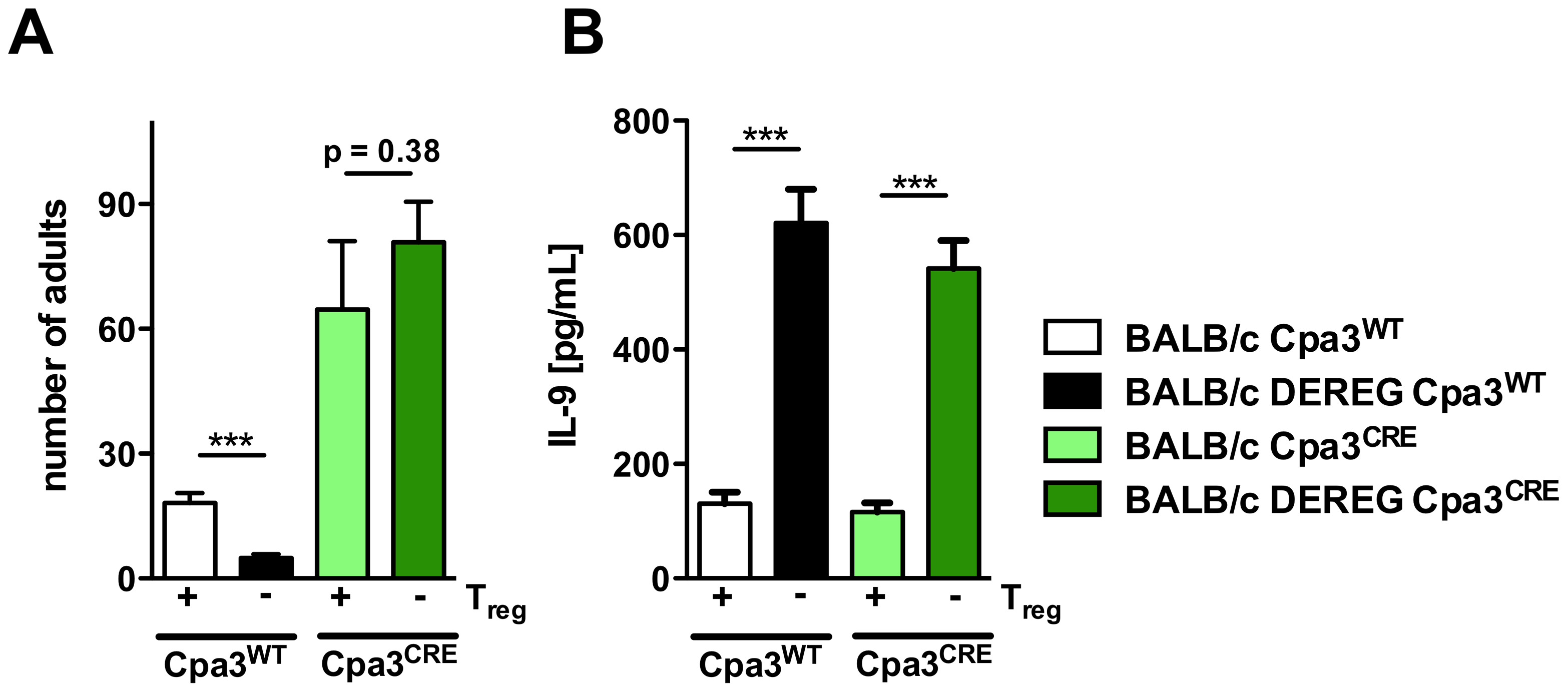 Role of mast cells during <i>S. ratti i</i>nfection in Treg-depleted BALB/c mice.