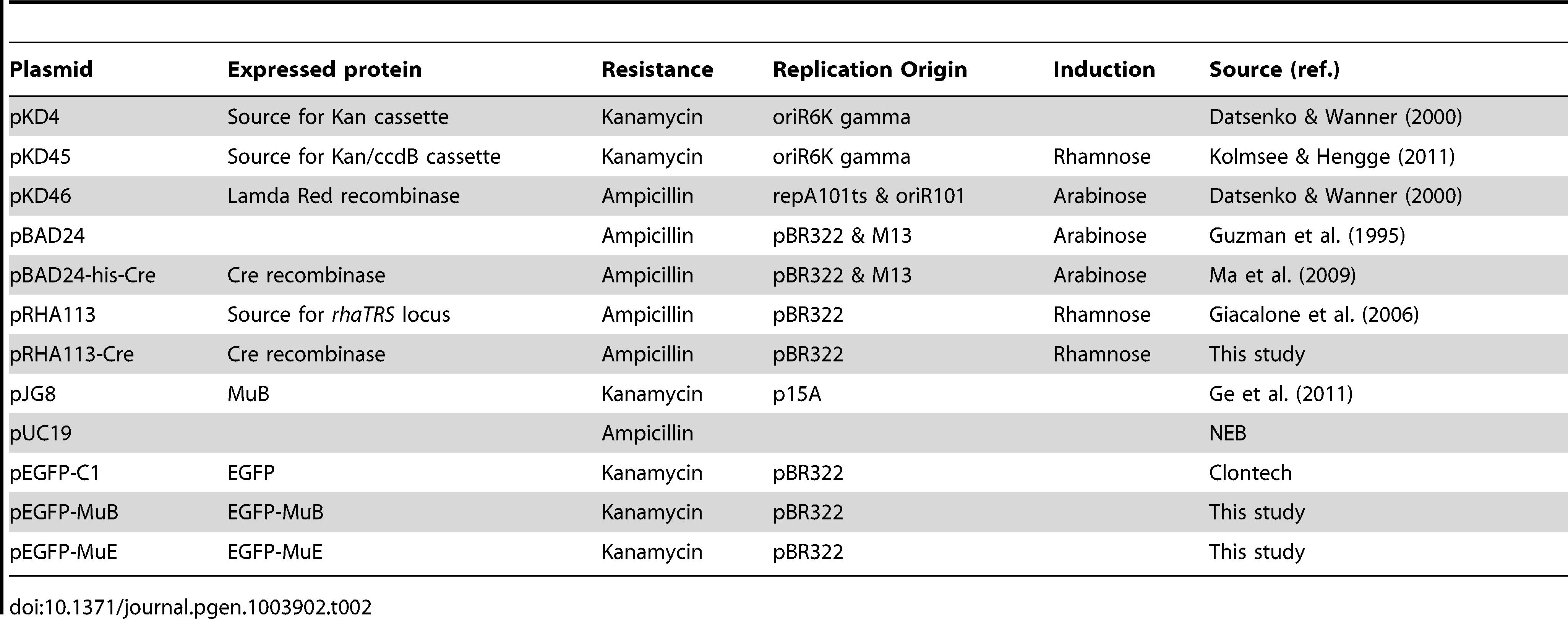 Plasmids.