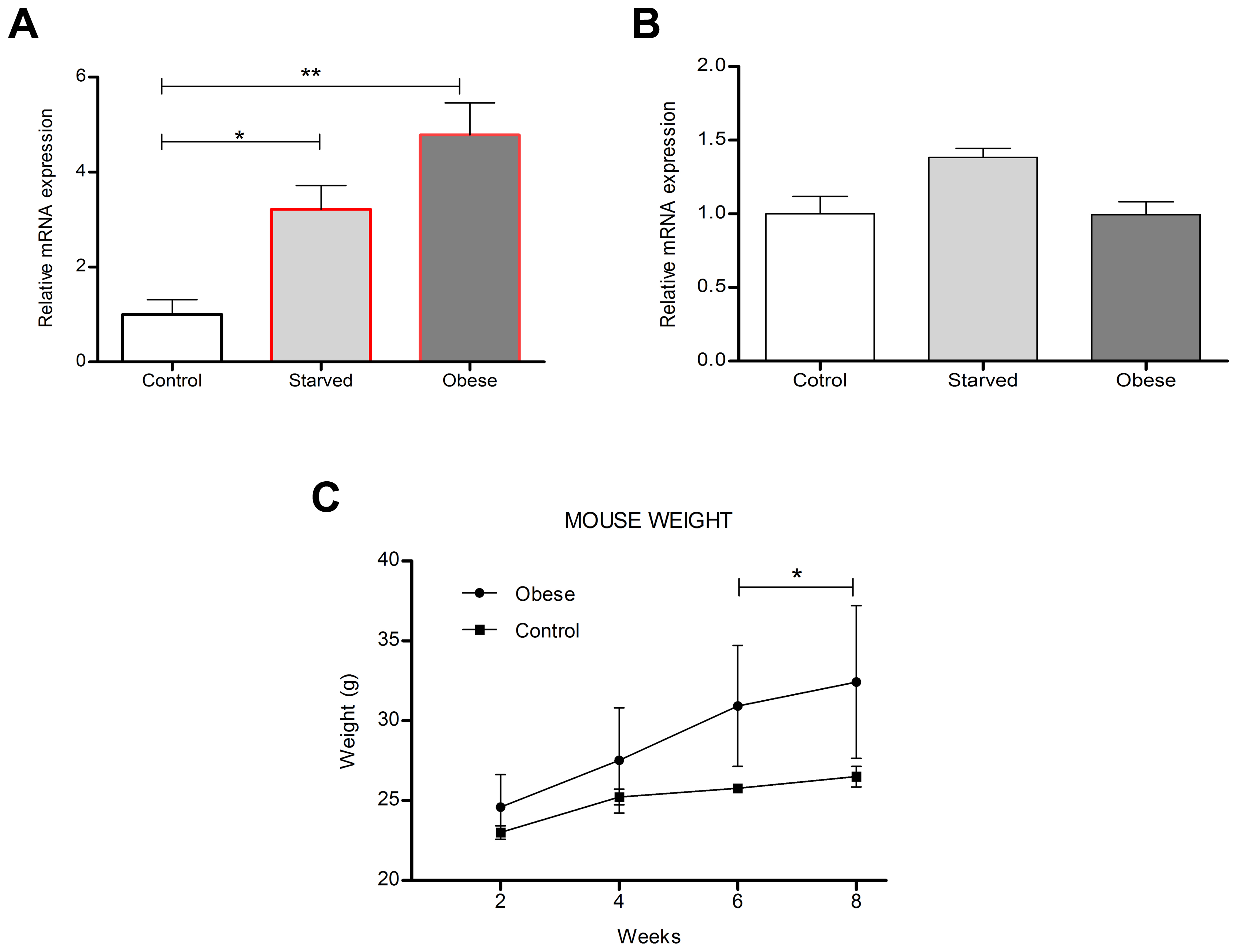Diet regulates mouse hypothalamic <i>Tfap2b</i> and <i>Kctd15</i> transcript levels.