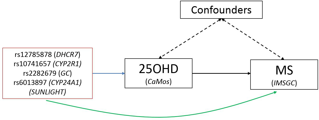 Schematic representation of Mendelian randomization analysis.