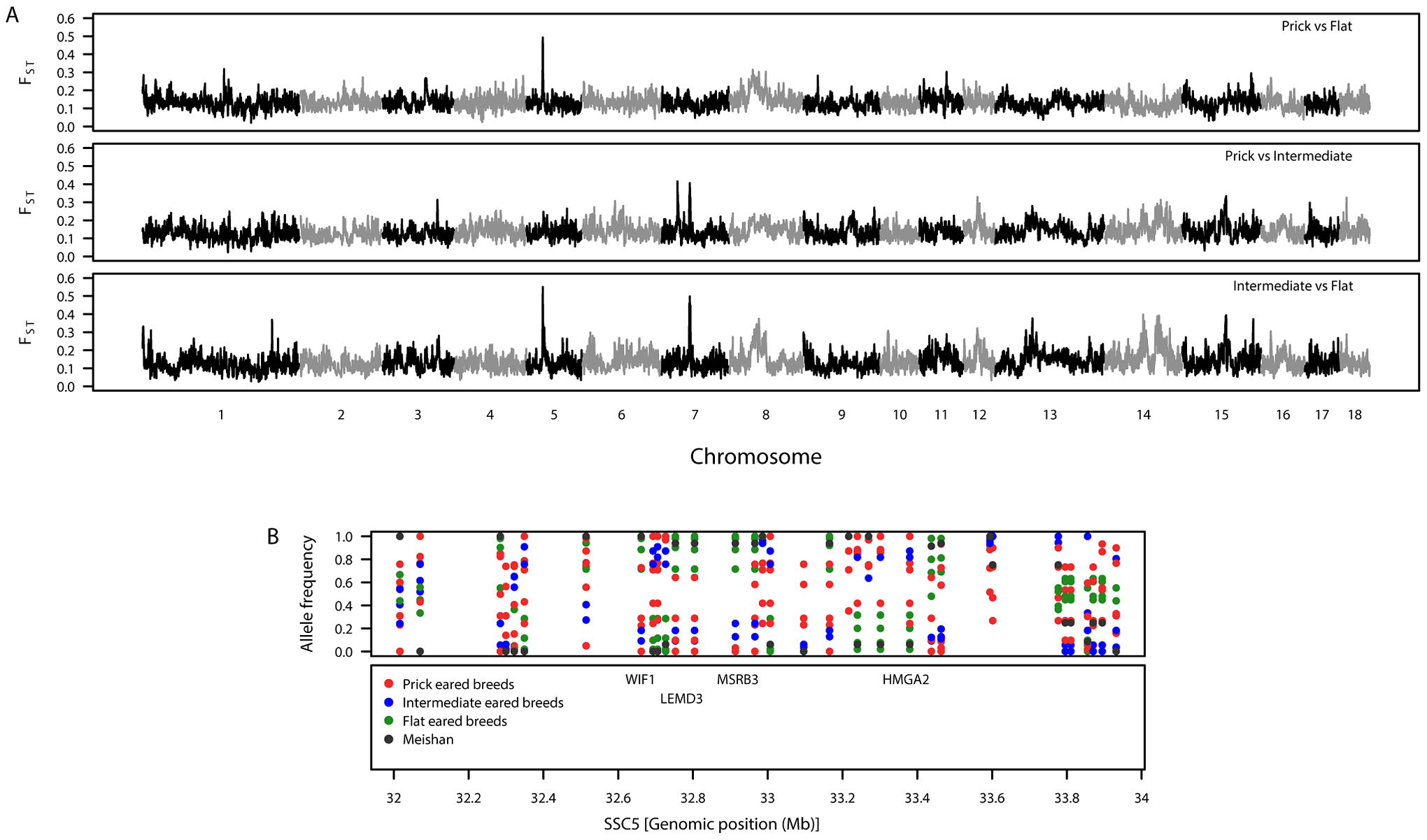 Patterns of genetic variation associated with pig ear phenotypes.