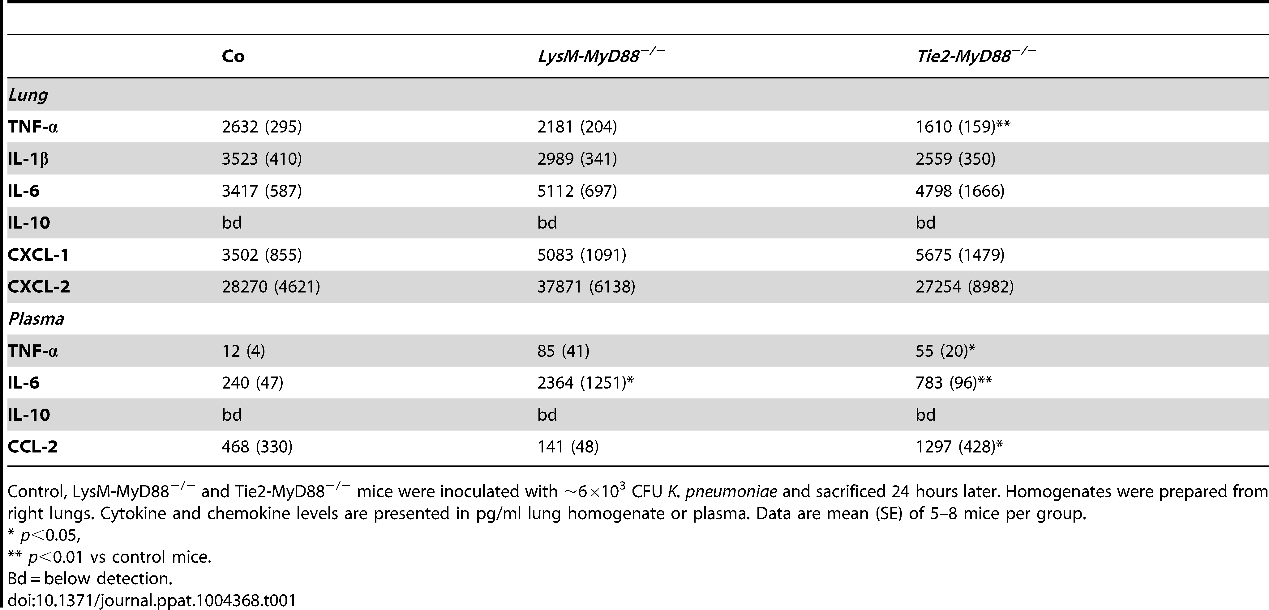 Inflammatory response in <i>LysM-MyD88<sup>−/−</sup></i> and <i>Tie2-MyD88<sup>−/−</sup></i> during <i>K. pneumonia</i> pulmonary tract infection.