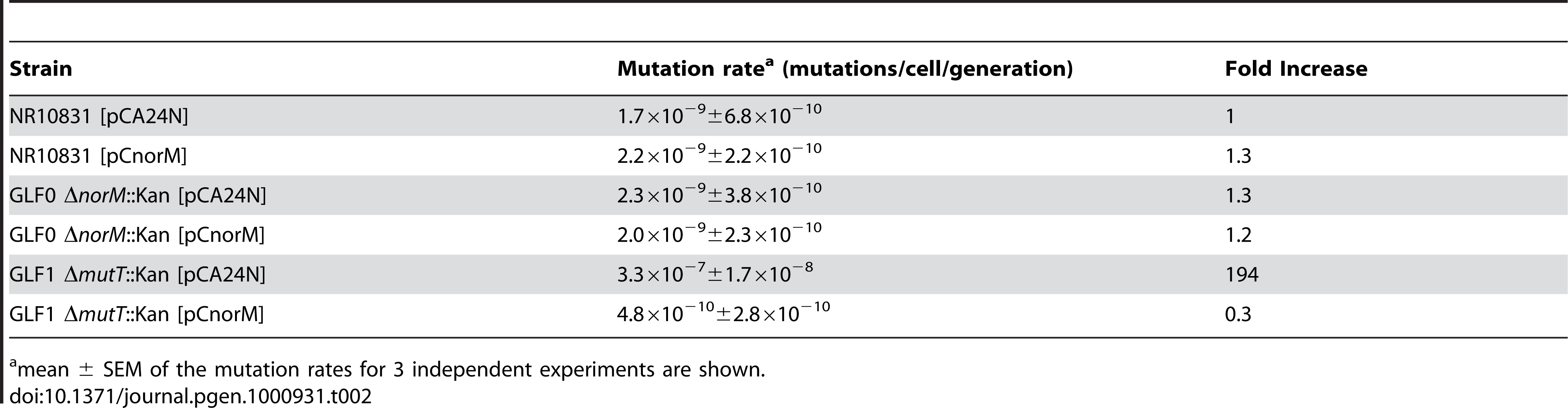 Spontaneous Lac<sup>−</sup> to Lac<sup>+</sup> mutation rates of the wild-type, Δ<i>mutT</i> and Δ<i>norM</i> derivatives containing the empty vector or the <i>norM</i>-encoding plasmid.