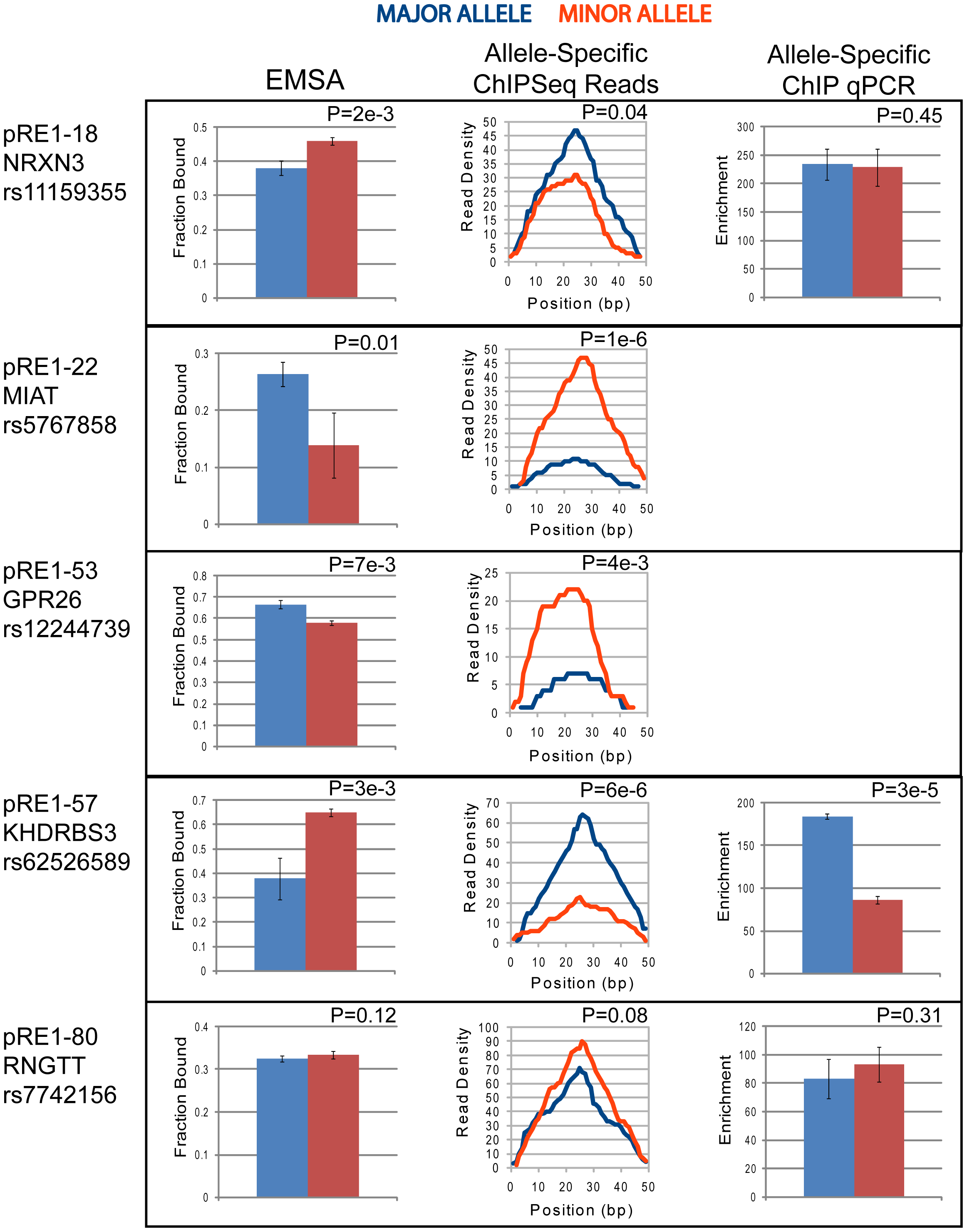Allele-specific recruitment to pRE1s in GM12878 cells.
