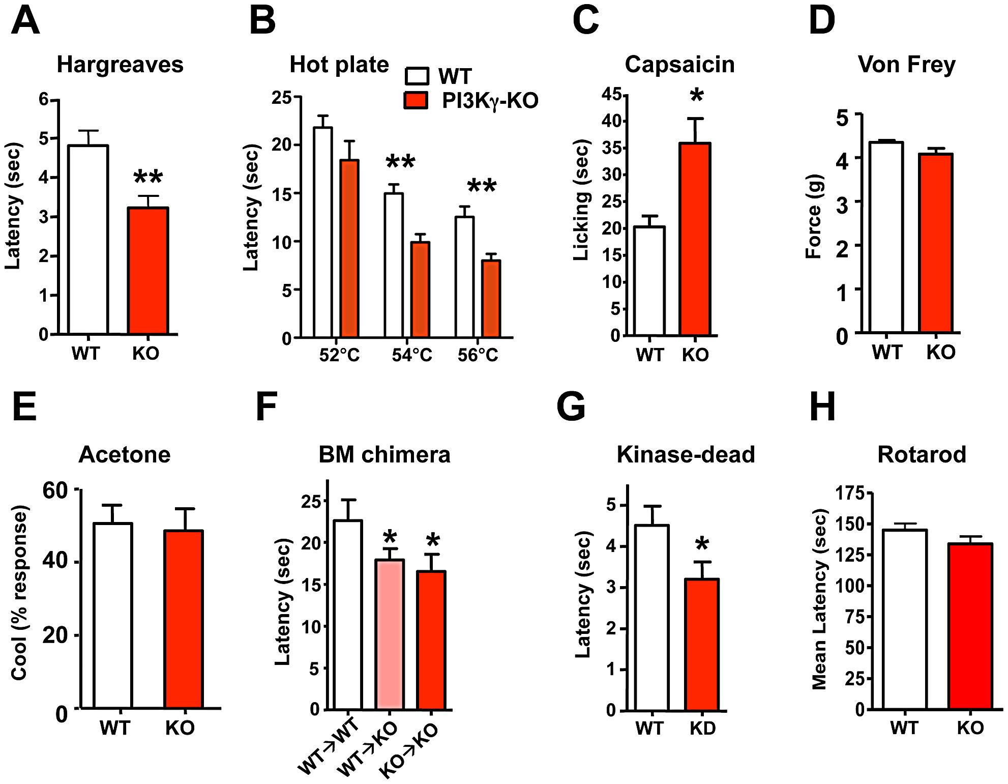 PI3Kγ signaling controls thermal and capsaicin nociception <i>in vivo</i>.