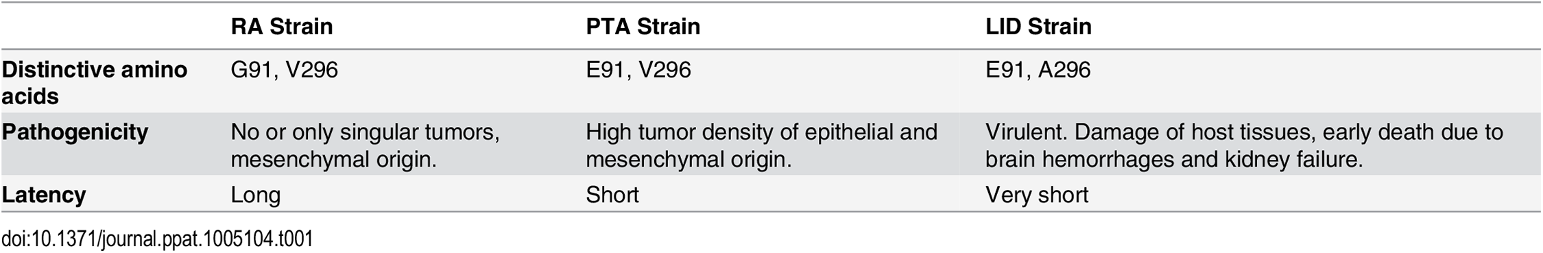 Description of the investigated MuPyV strains.